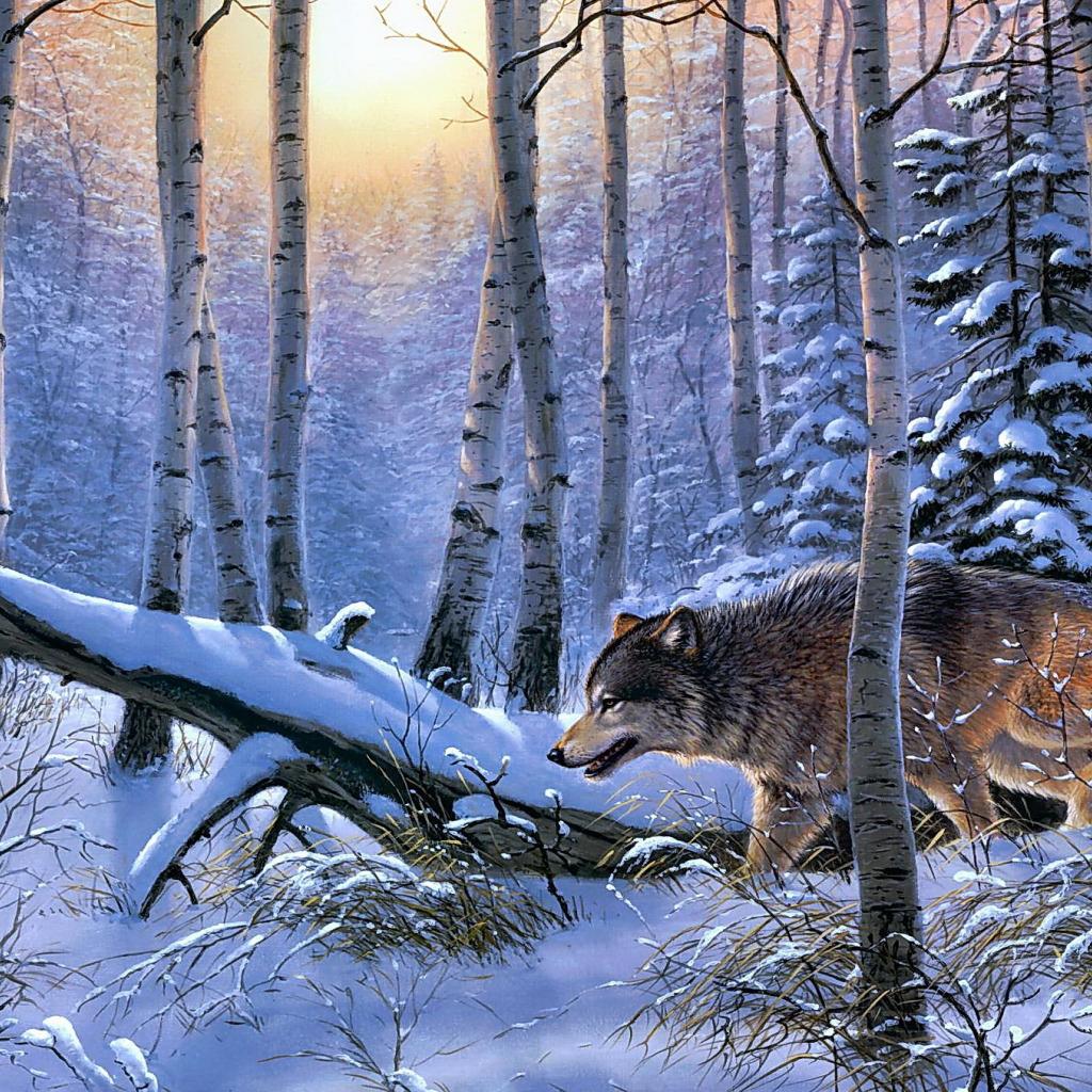 синица фотообои с зимним лесом волками белыми совами названия города вполне