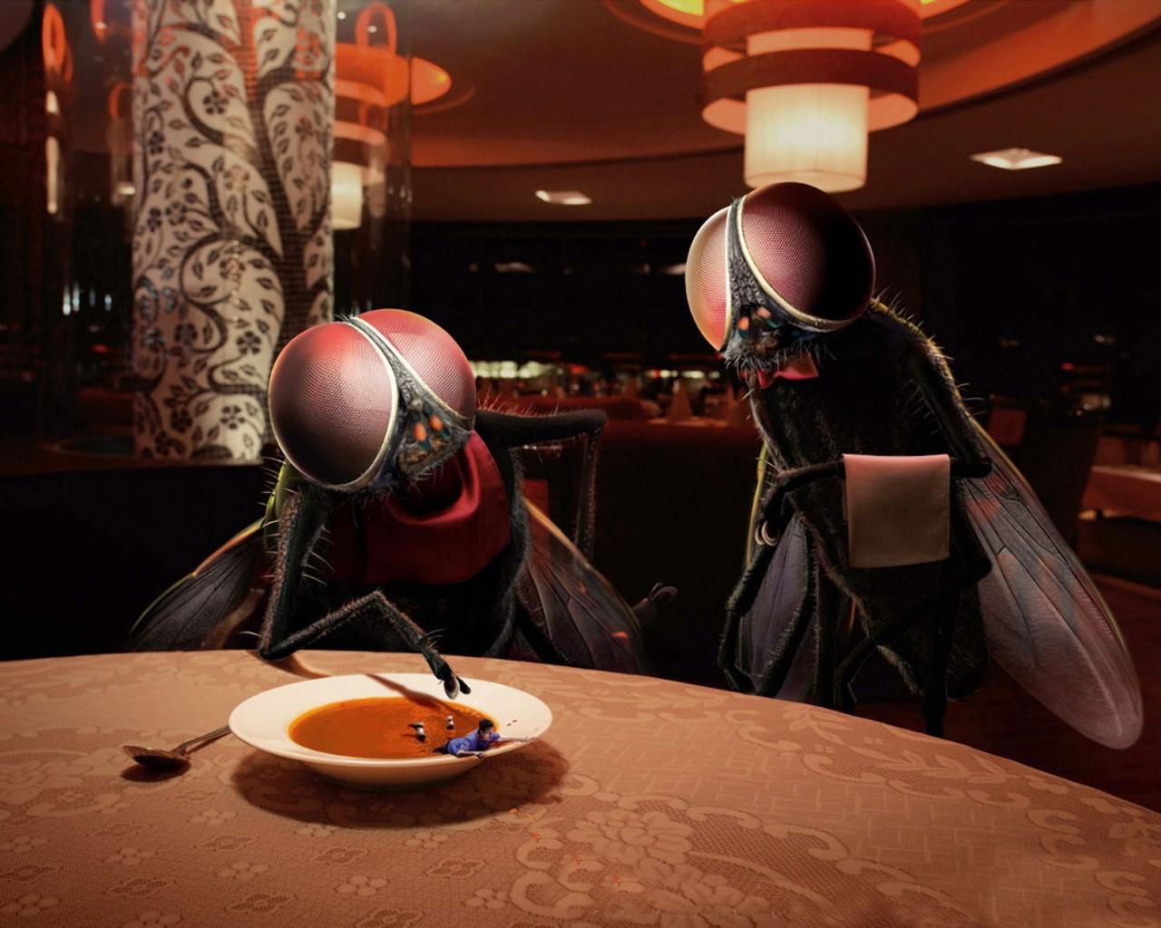 ресторанный юмор картинки популярен