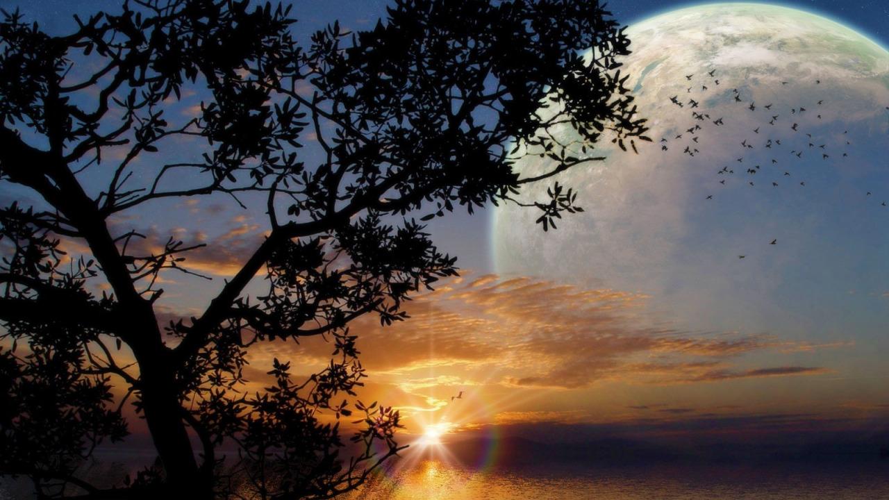 Лунная соната открытка, спидометр поздравление
