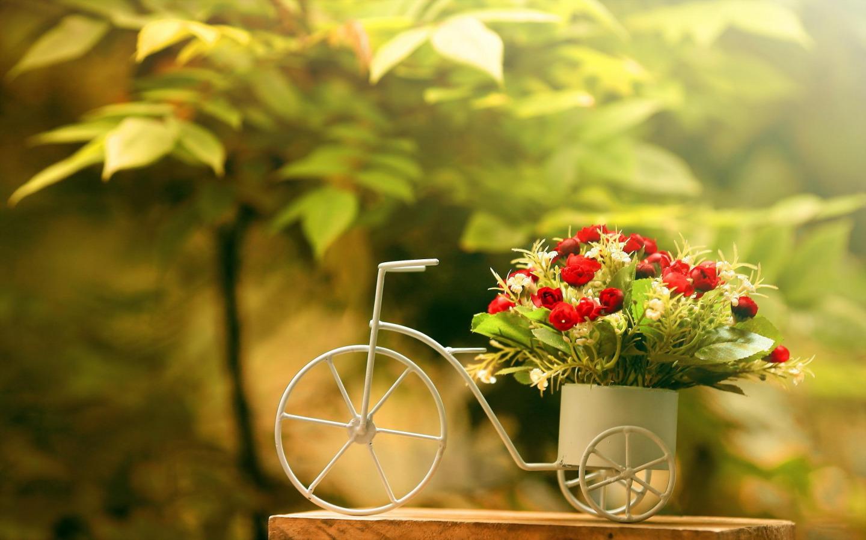Цветы велосипед