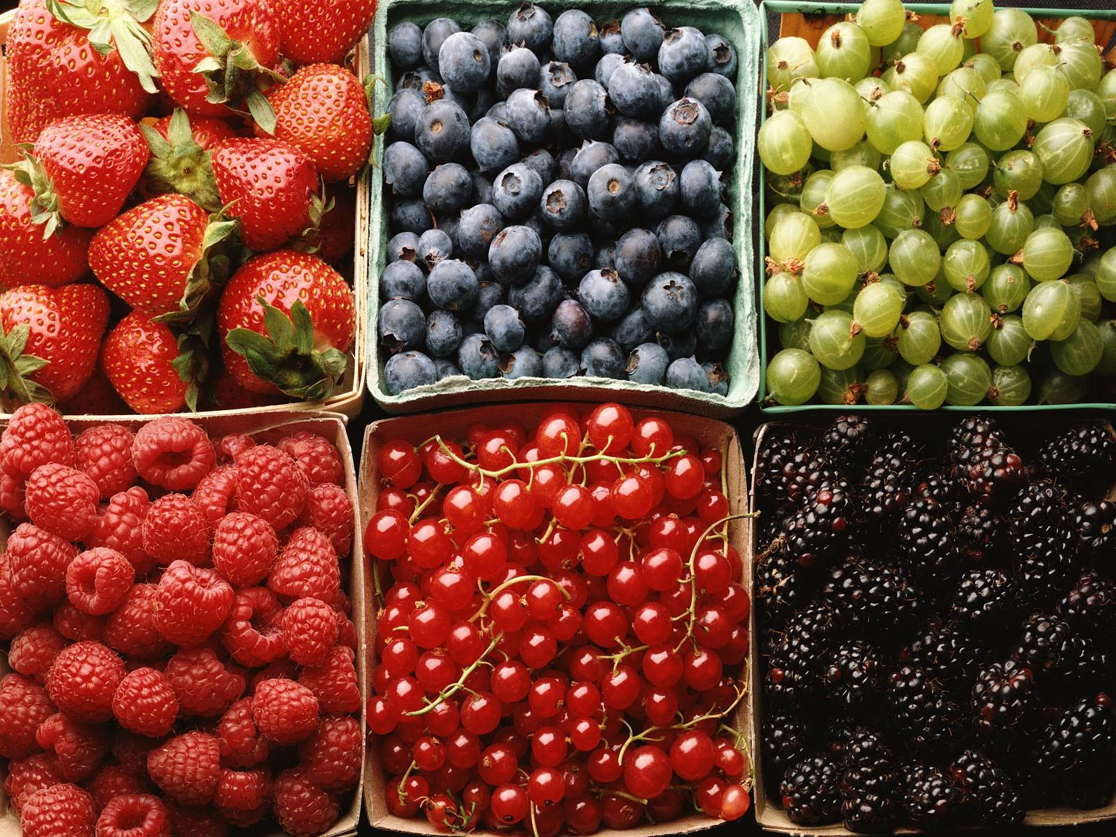 все более ягоды все виды с фото версия, что такое
