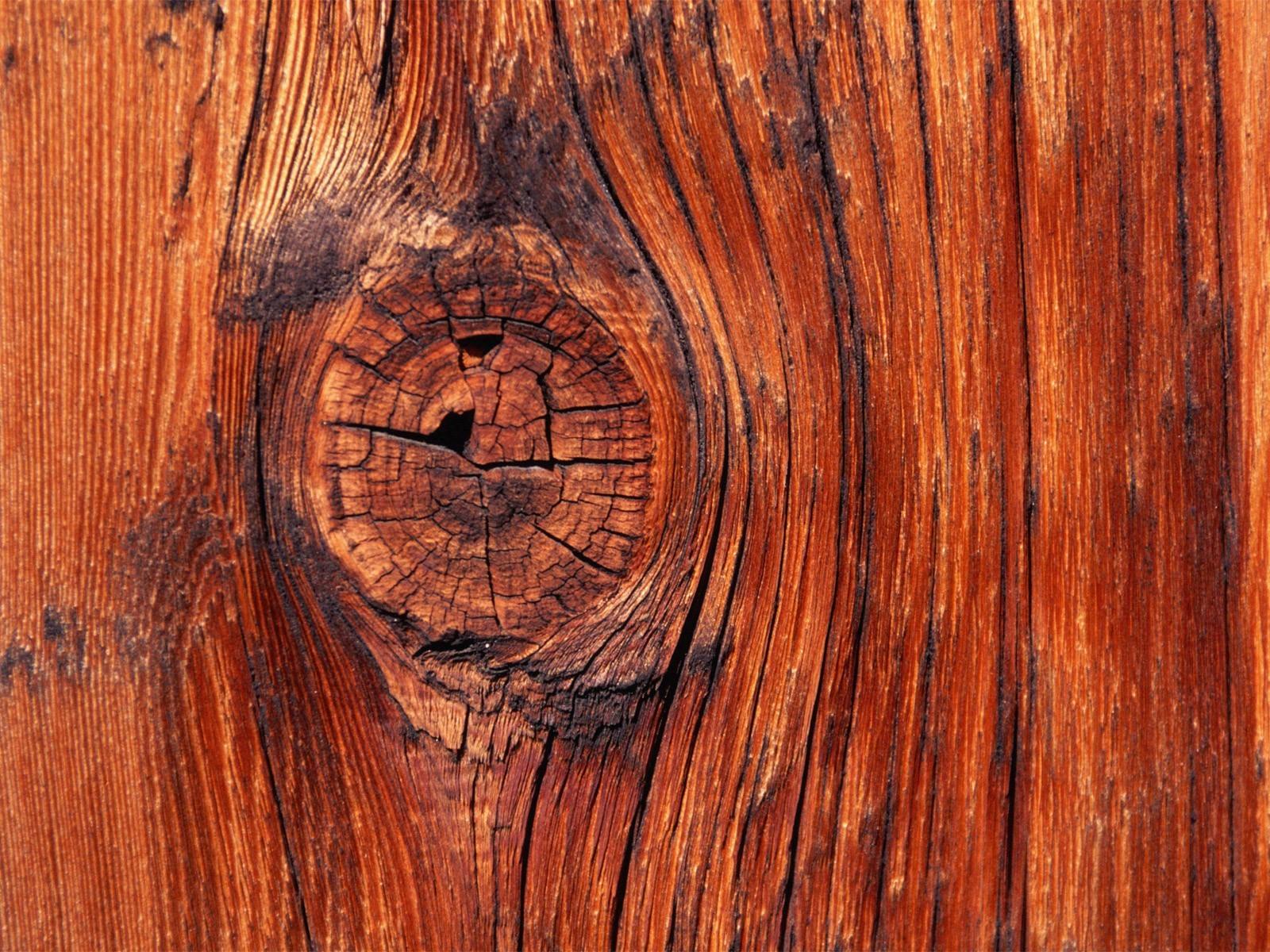 сучок от дерева: