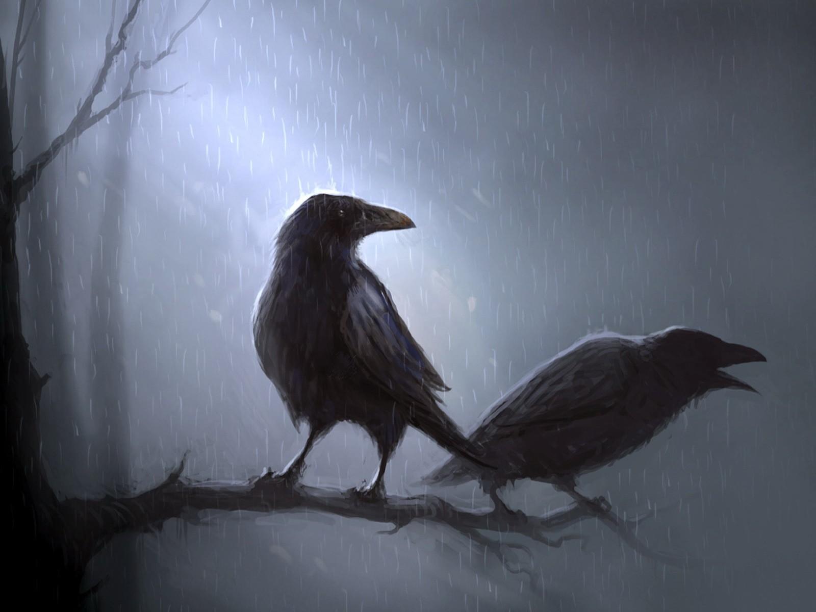праздник, который картинки загадочных птиц представляет собой