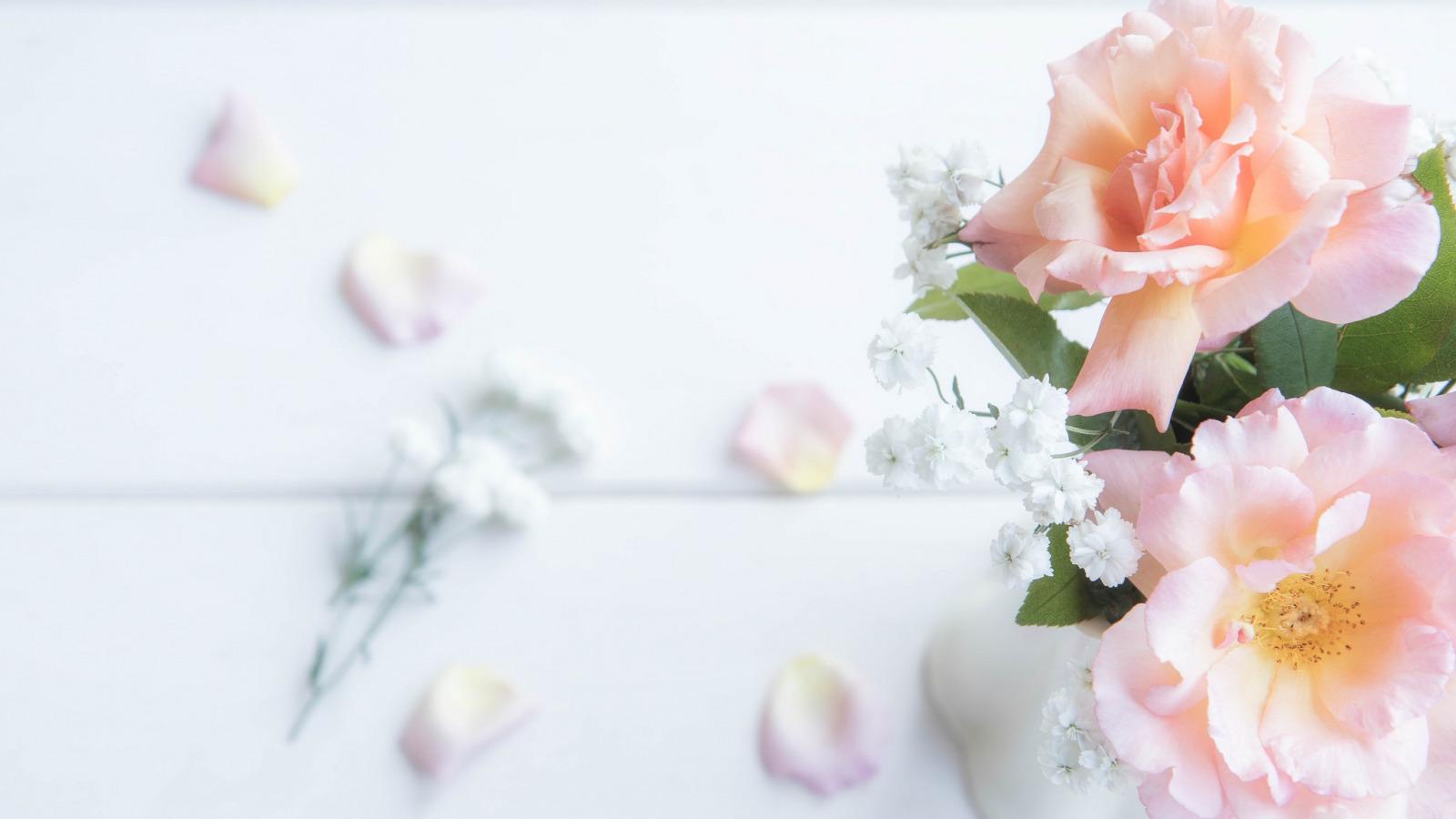 Фотообои на стену Белые нежные цветы - Луг - Цветы - Фотообои