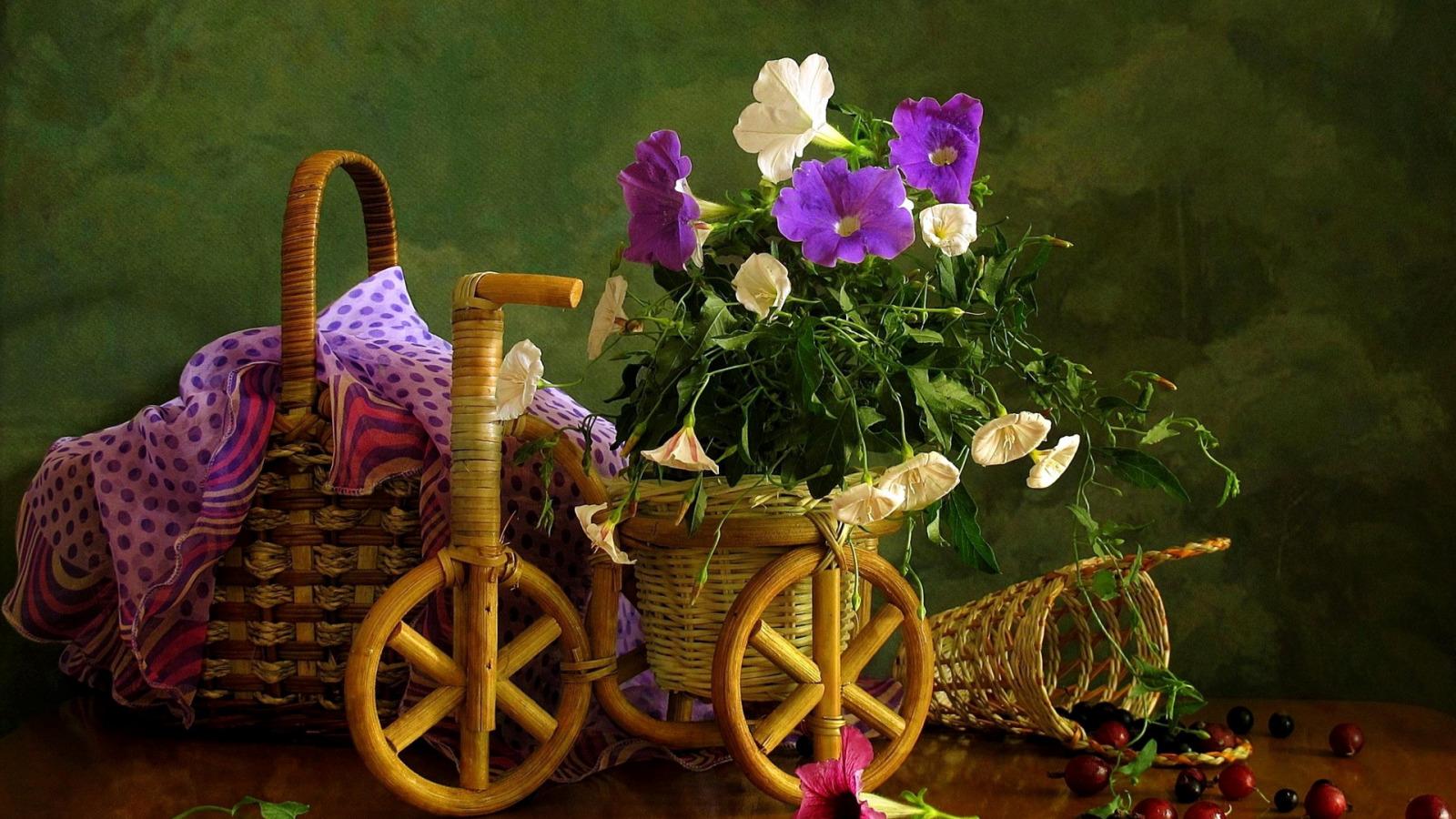 cvety-krasivye-polevye.jpg?d=1