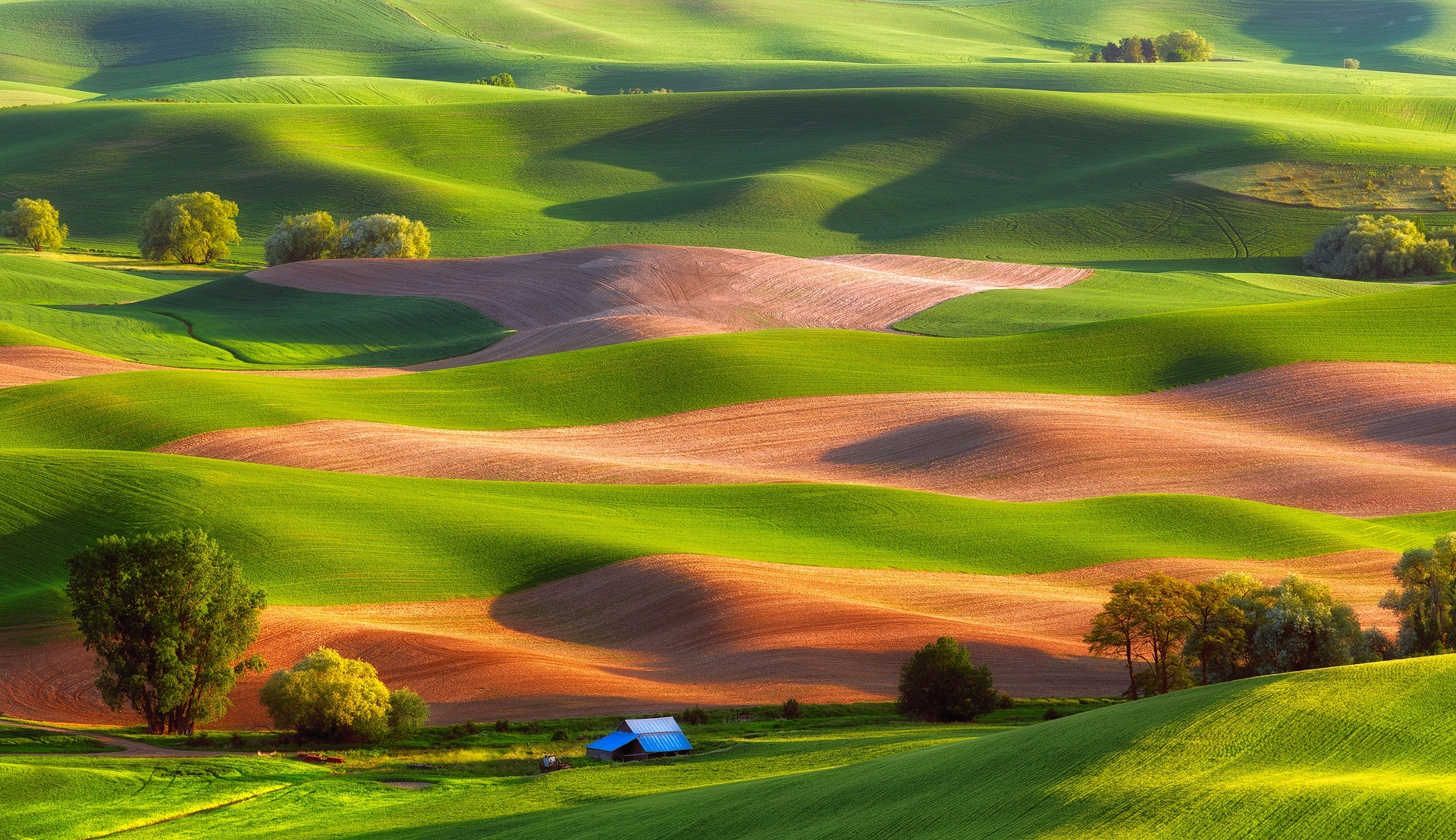 Зеленое поле возле горы  № 1077817 загрузить