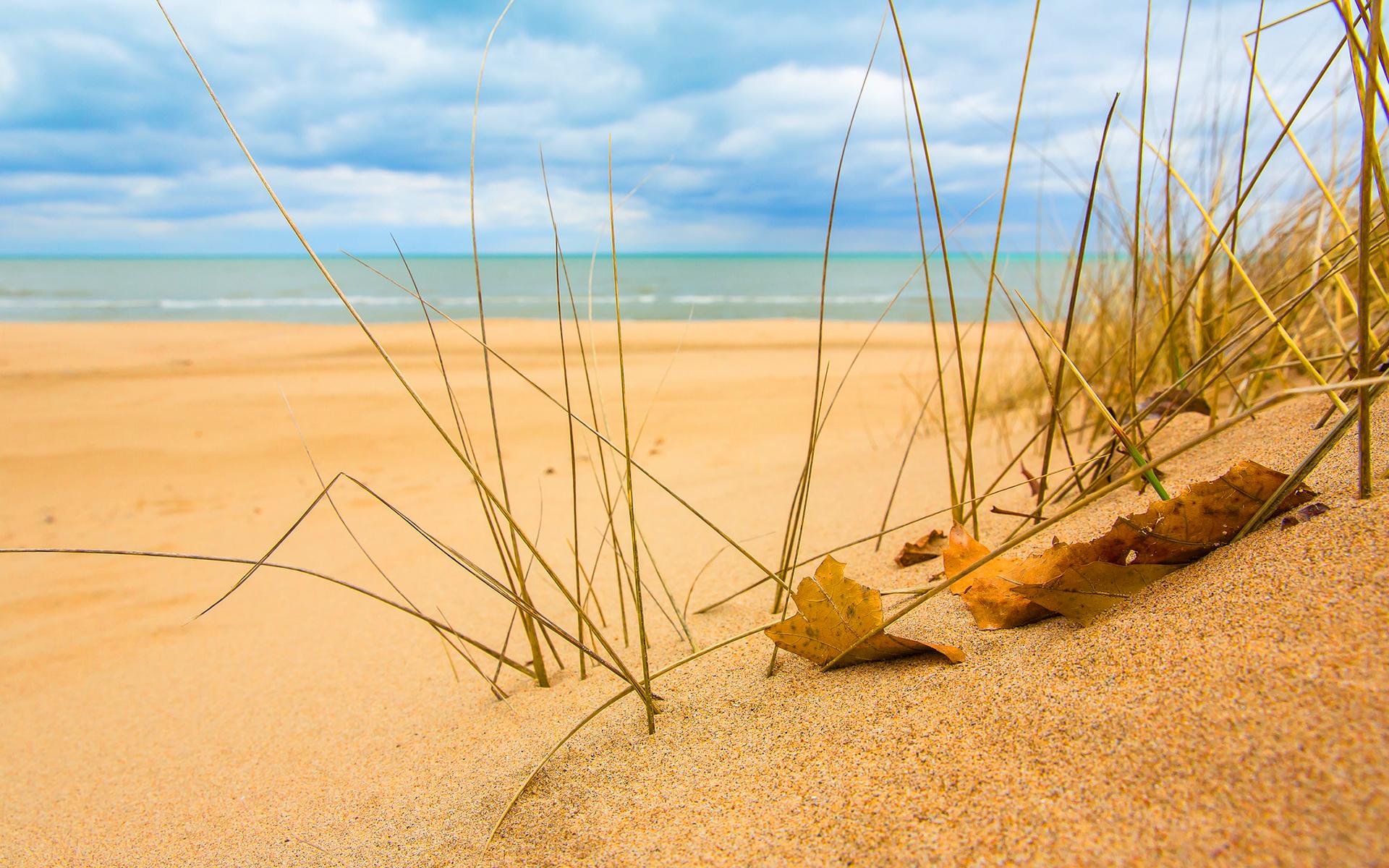 текстуры природа песок  № 2962176  скачать