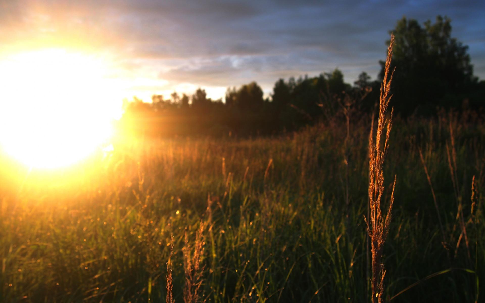 идеи декорирования рассвет солнце встает картинки смотреть человек