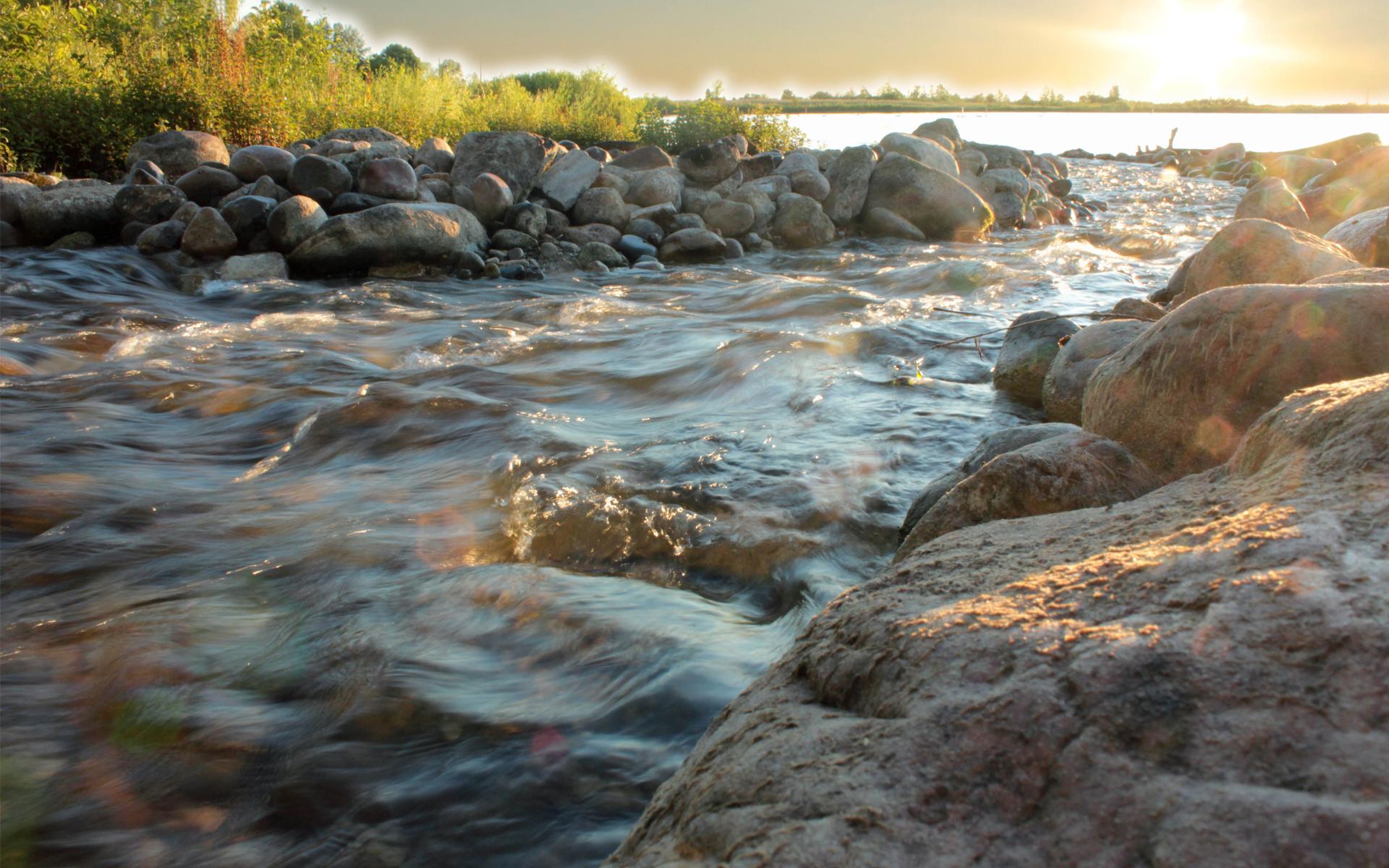 растения ручей реки моря картинки остров туристы