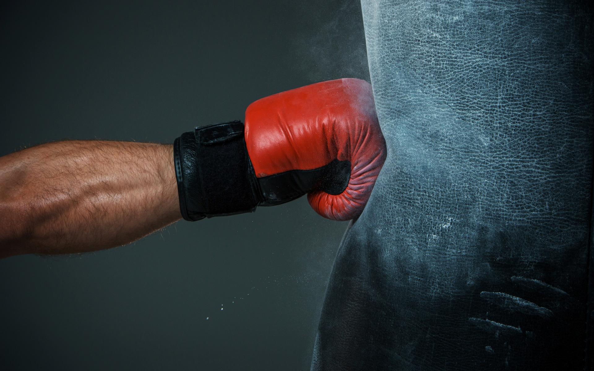 Картинки для боксеров