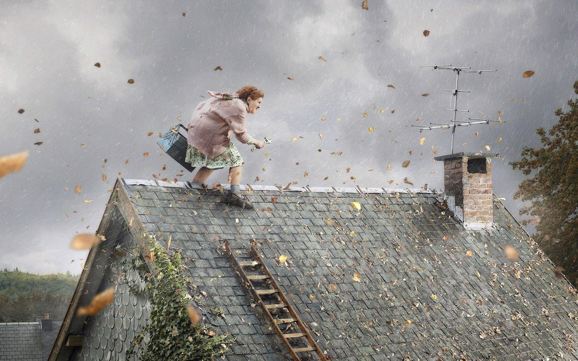 Смешные картинки про ветер