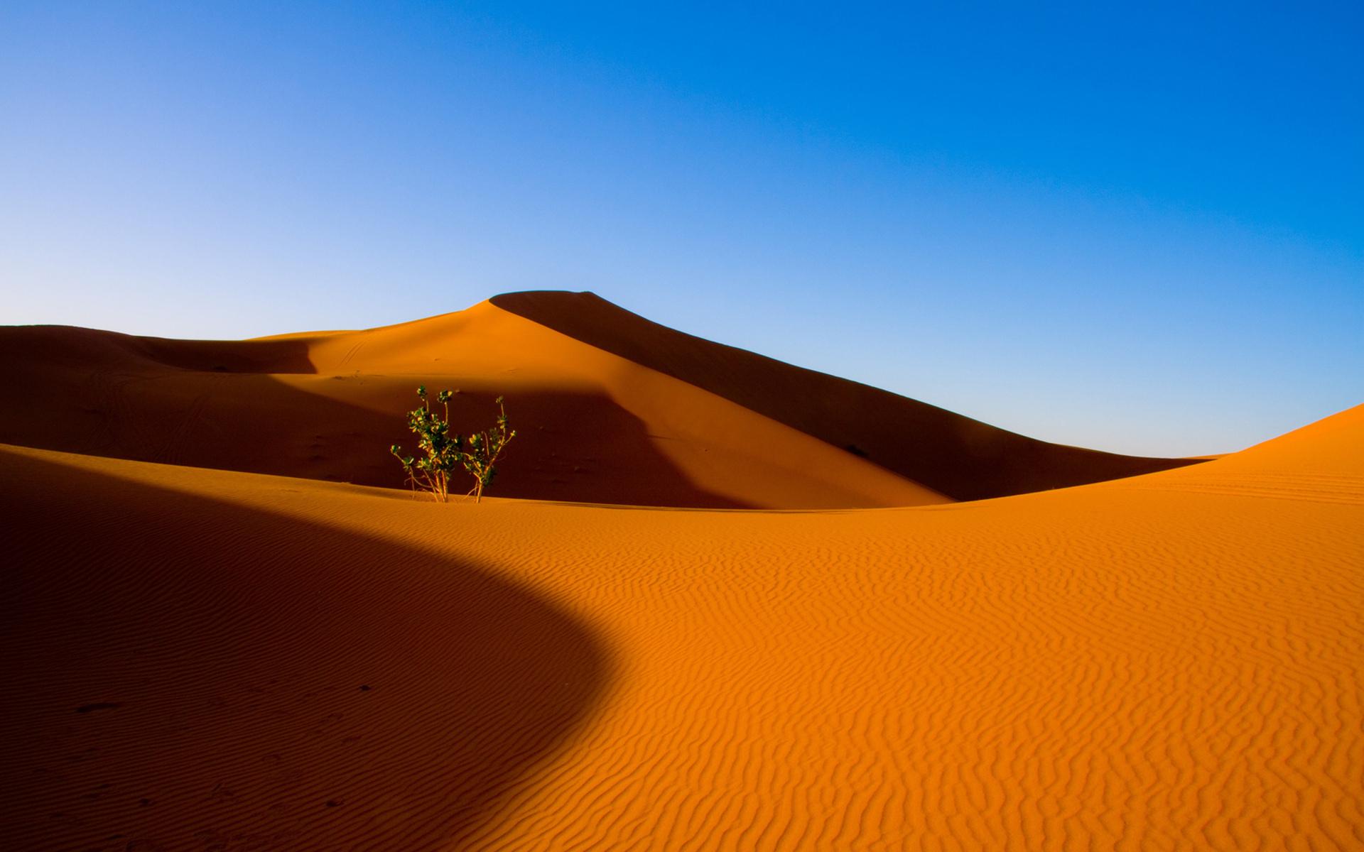 картинки пустыня для рабочего стола ему, что вас