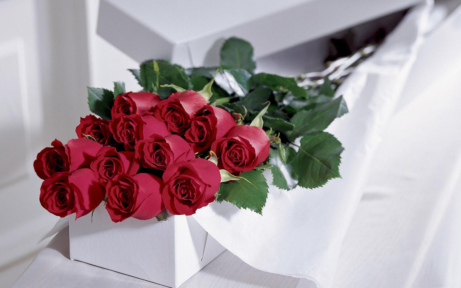 Красивые цветы для любимой, один год фирме