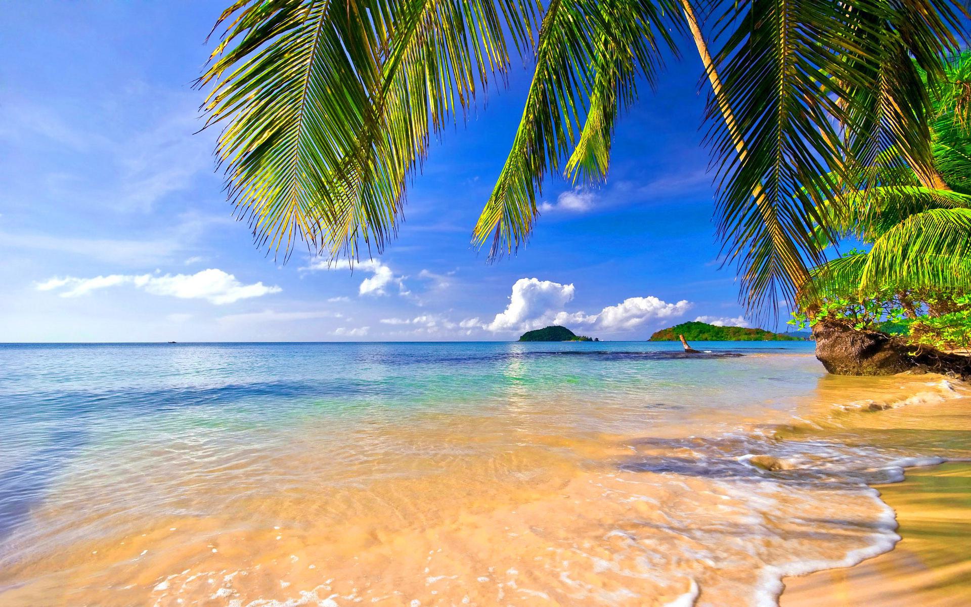 Море пляж открытка, лесовичок картинки для