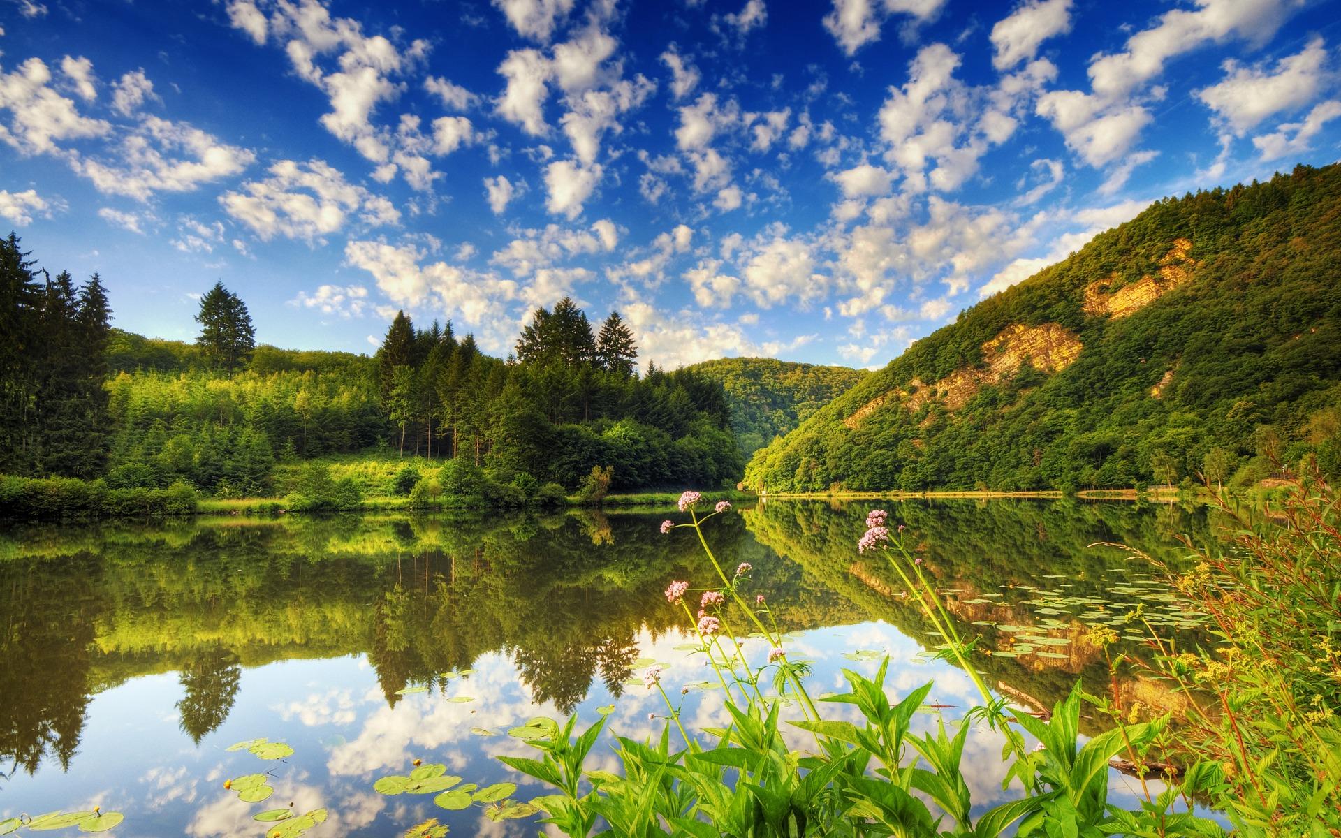 Летом фото высокое разрешение