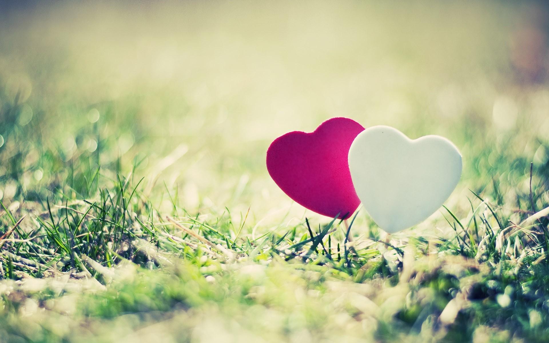 Сердце из зелени  № 1599055  скачать