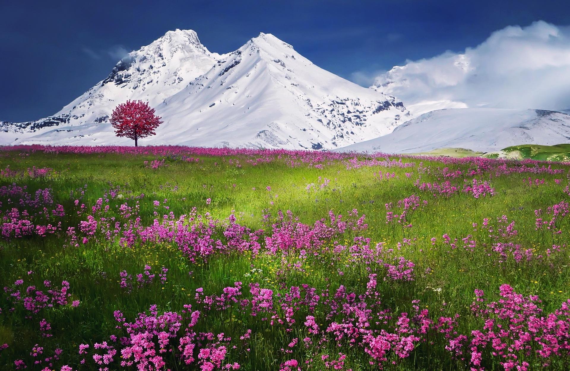 Картинки весенний пейзаж на рабочий стол