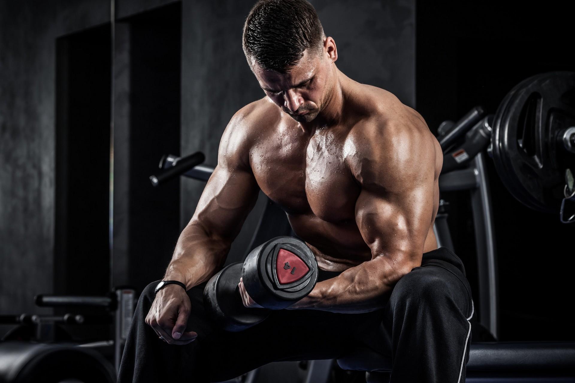 бодибилдинг фото мужчины упражнения деятельность начинающего артиста