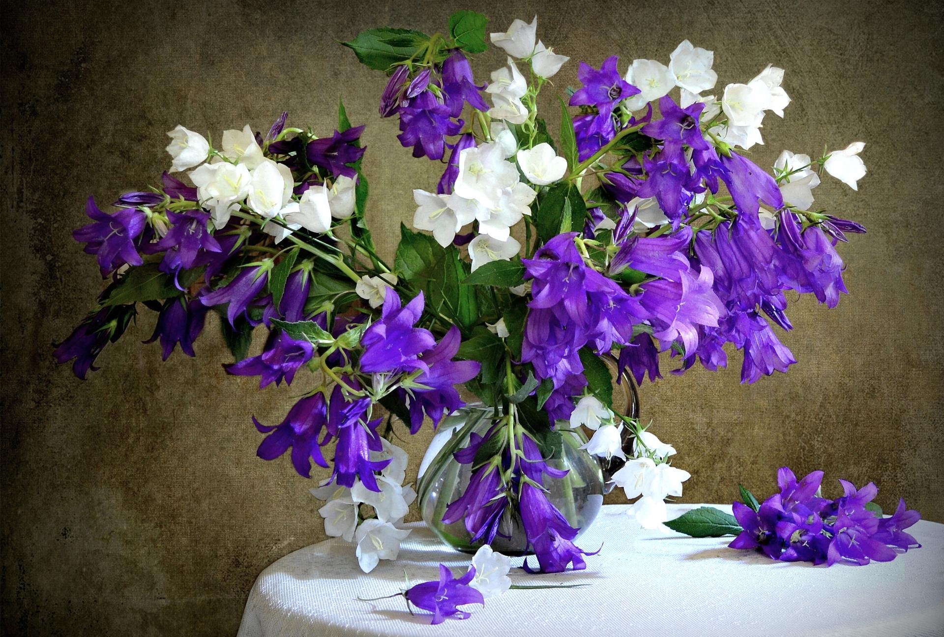 Колокольчики в букете, цветы