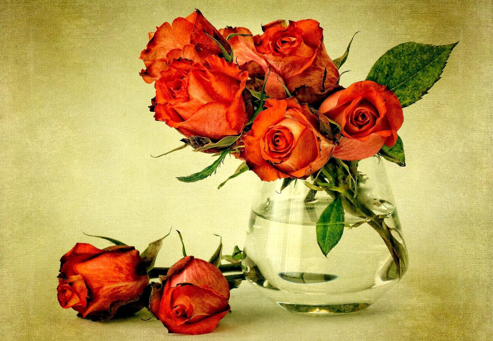В контакте открытки с розами, открытки днем рождения