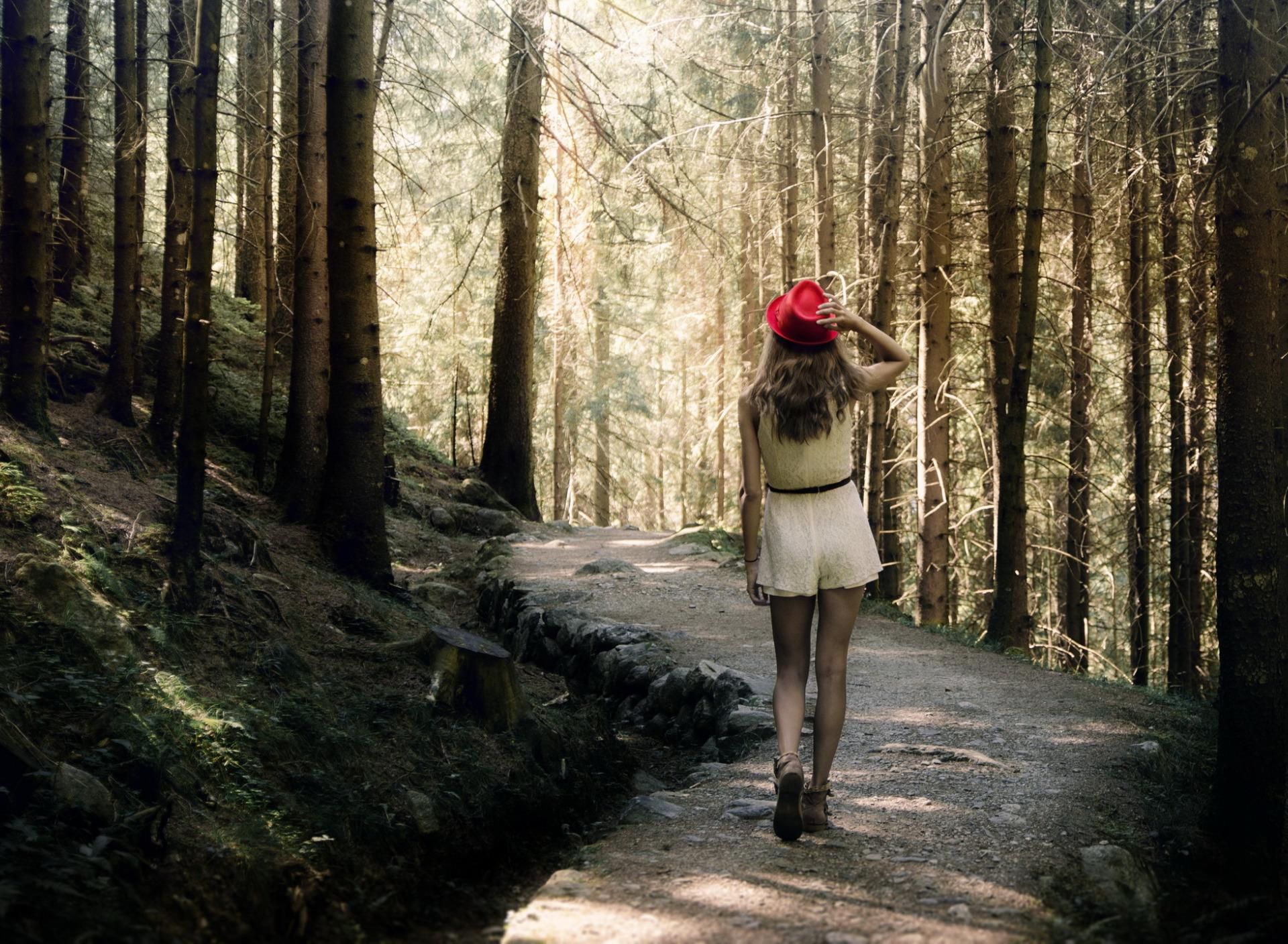 картинки один человек в лесу изобретений человечества упорядоченный