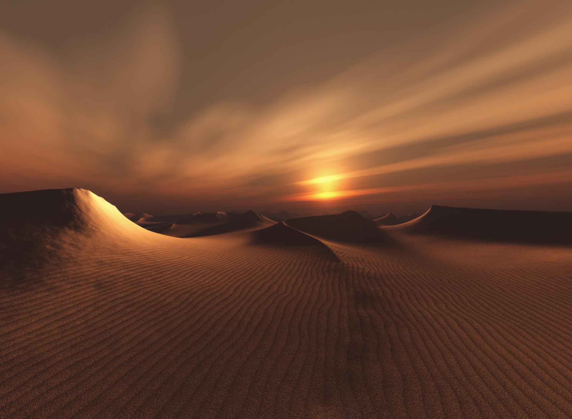 картинки пустыня рассвет бизнес