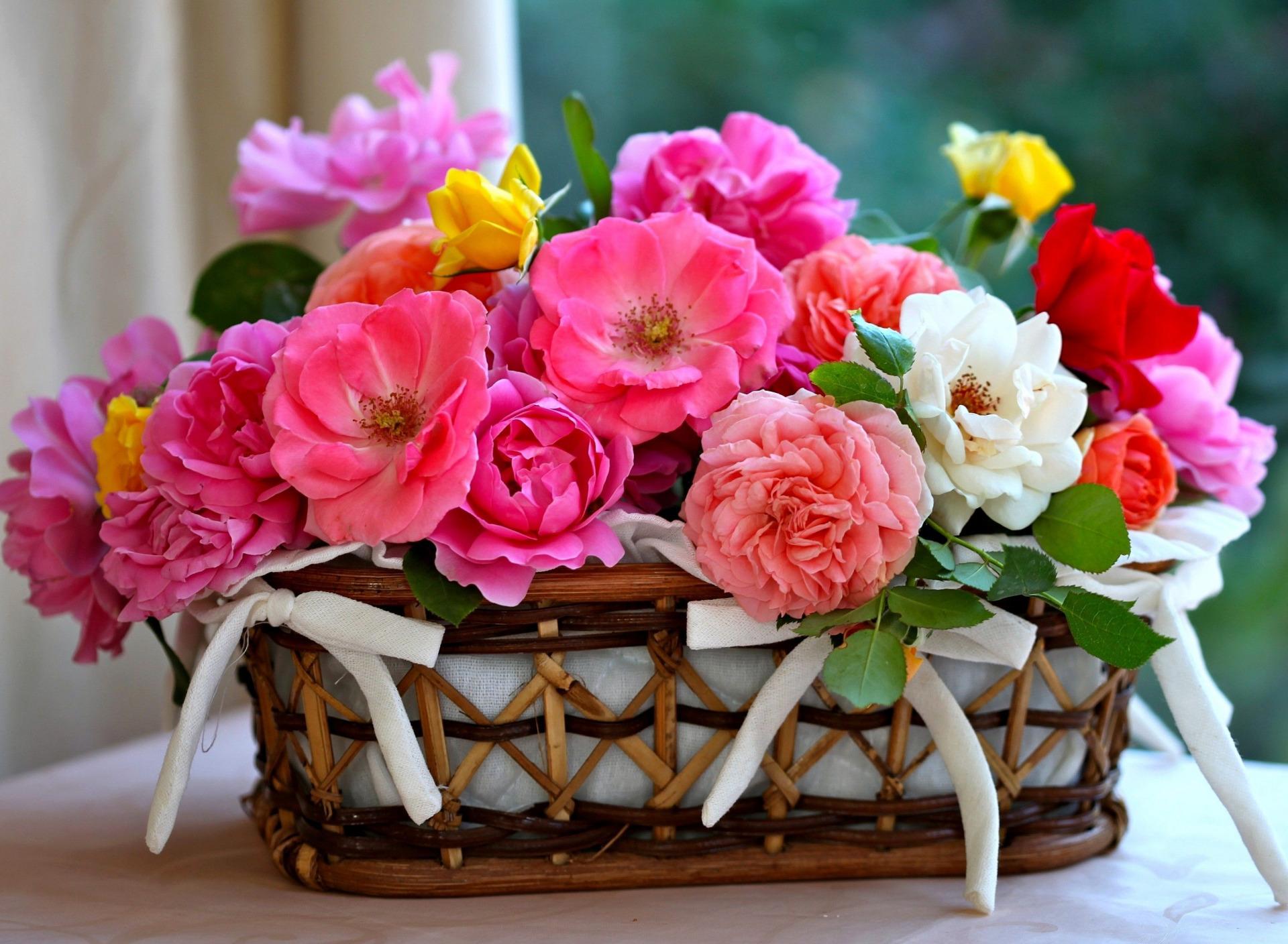 сайт с цветами фото тема для тех