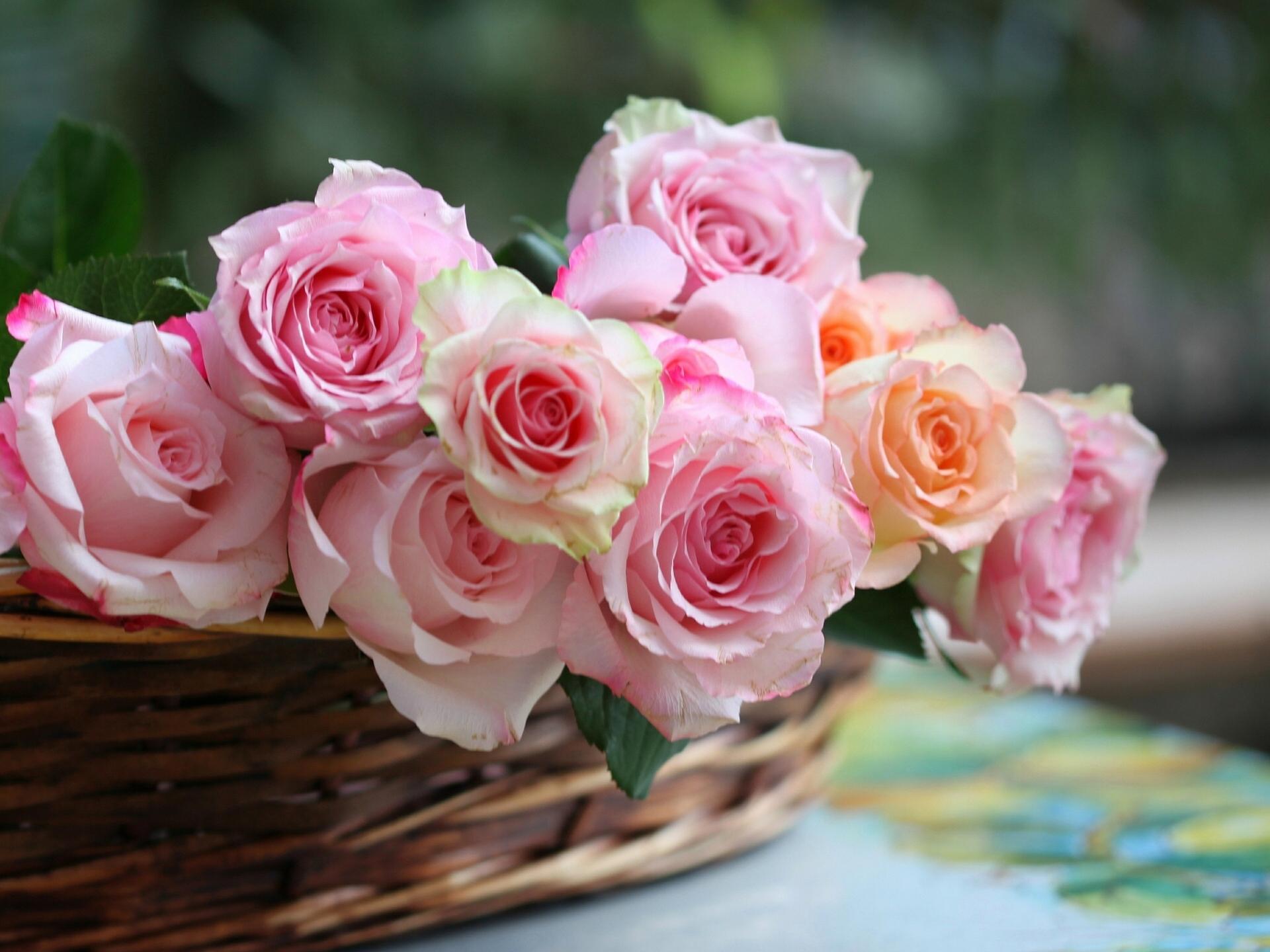 букет роз обои на рабочий стол в высоком качестве № 178065 загрузить
