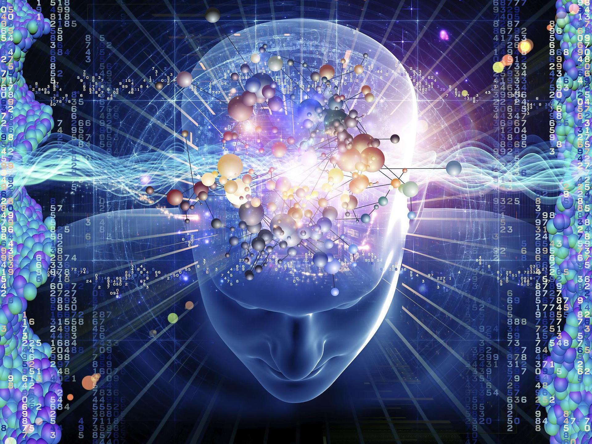 общей картинки для развития разума места дислокации суздали