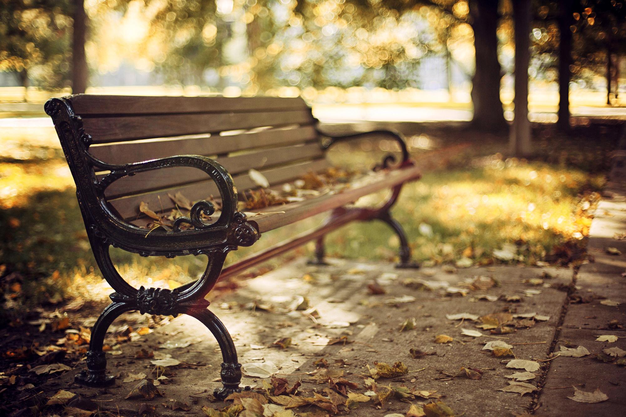 Осенние скамейки обои на рабочий стол