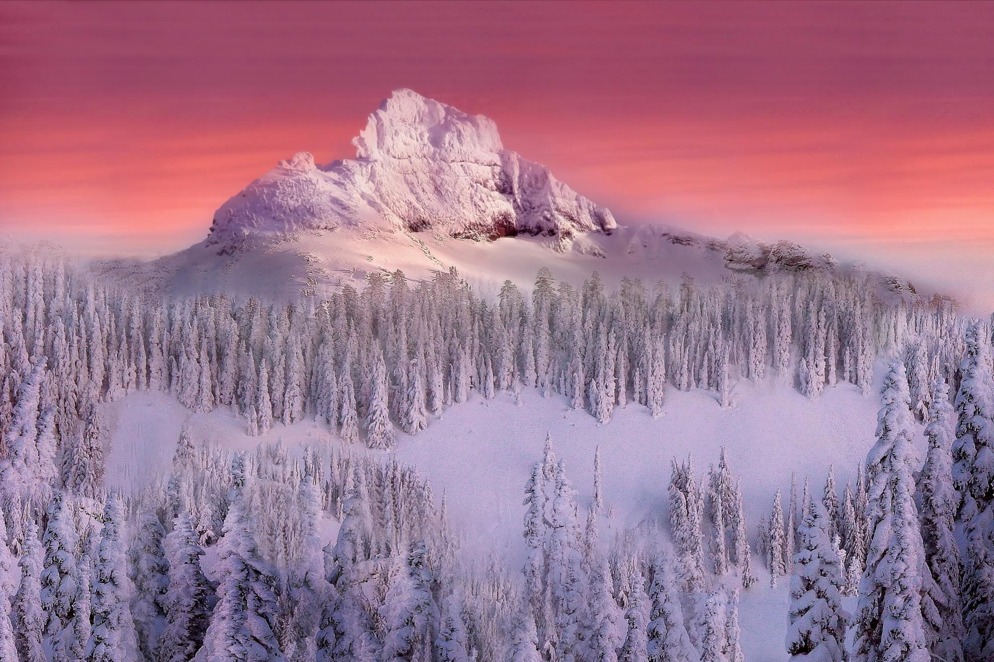 природа скалы деревья горы снег зима nature rock trees mountains snow winter  № 455824 бесплатно
