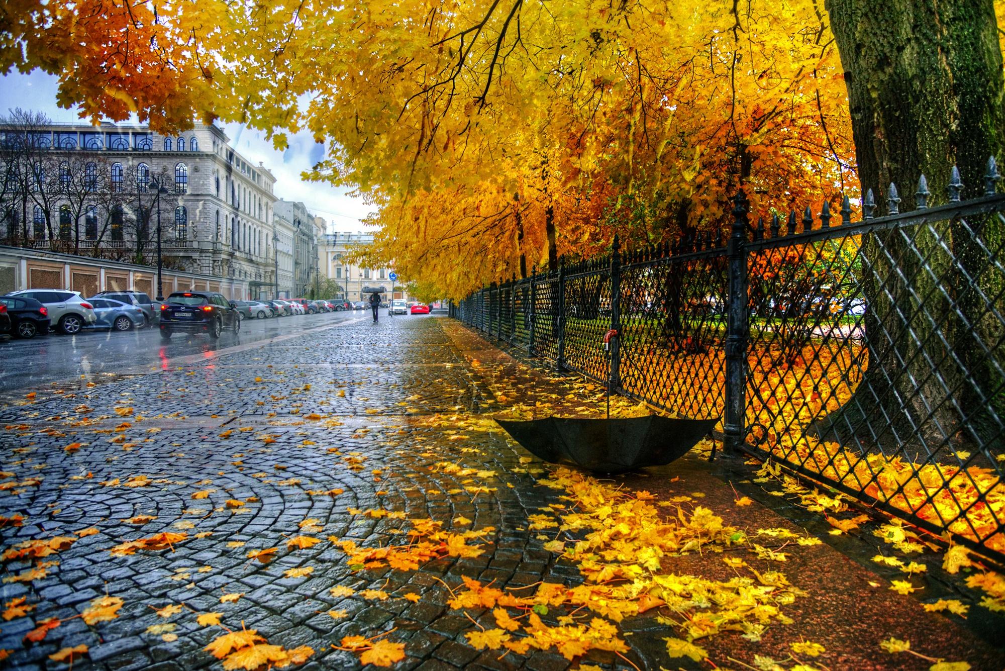 осень в городе в картинках экологически