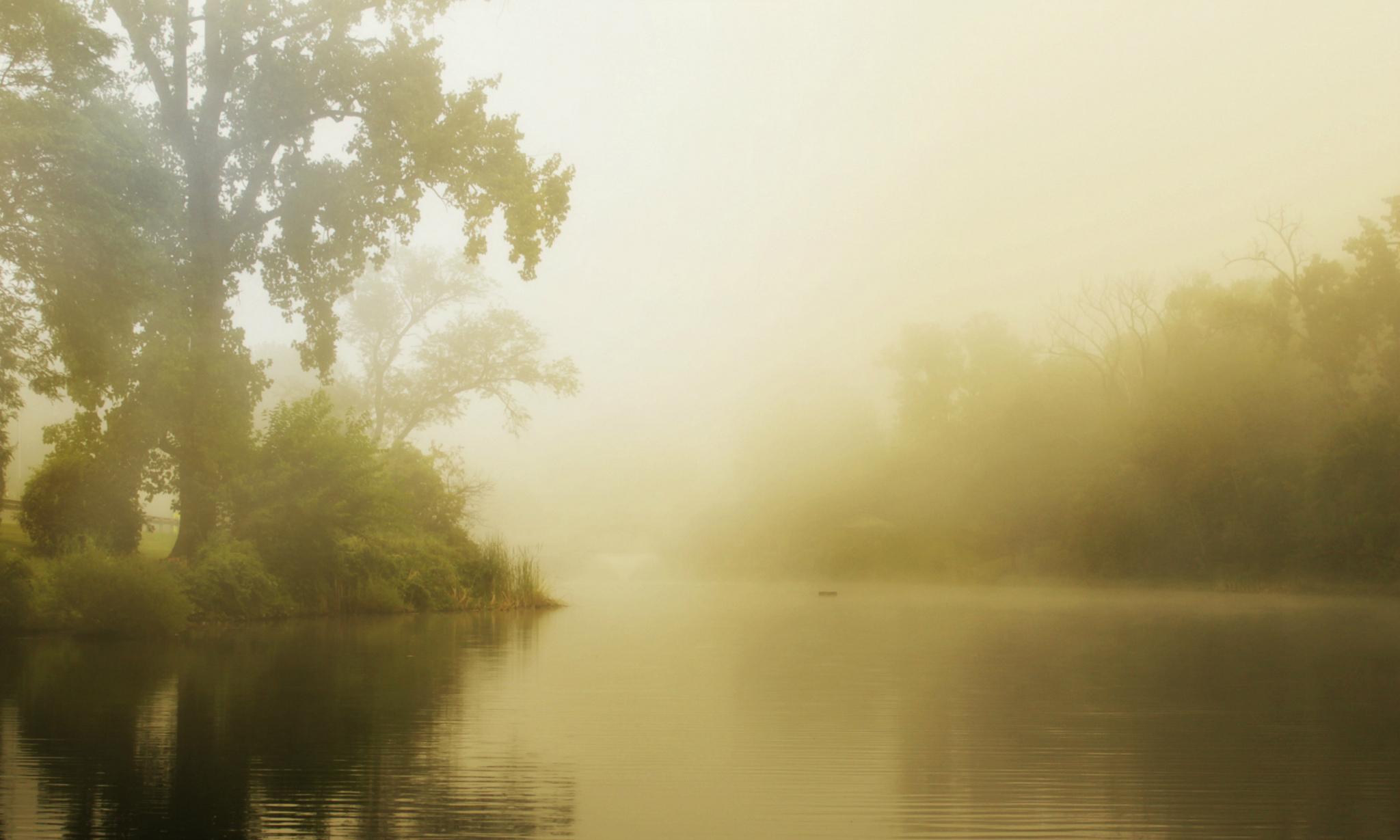Туман вдоль реки  № 1281431  скачать
