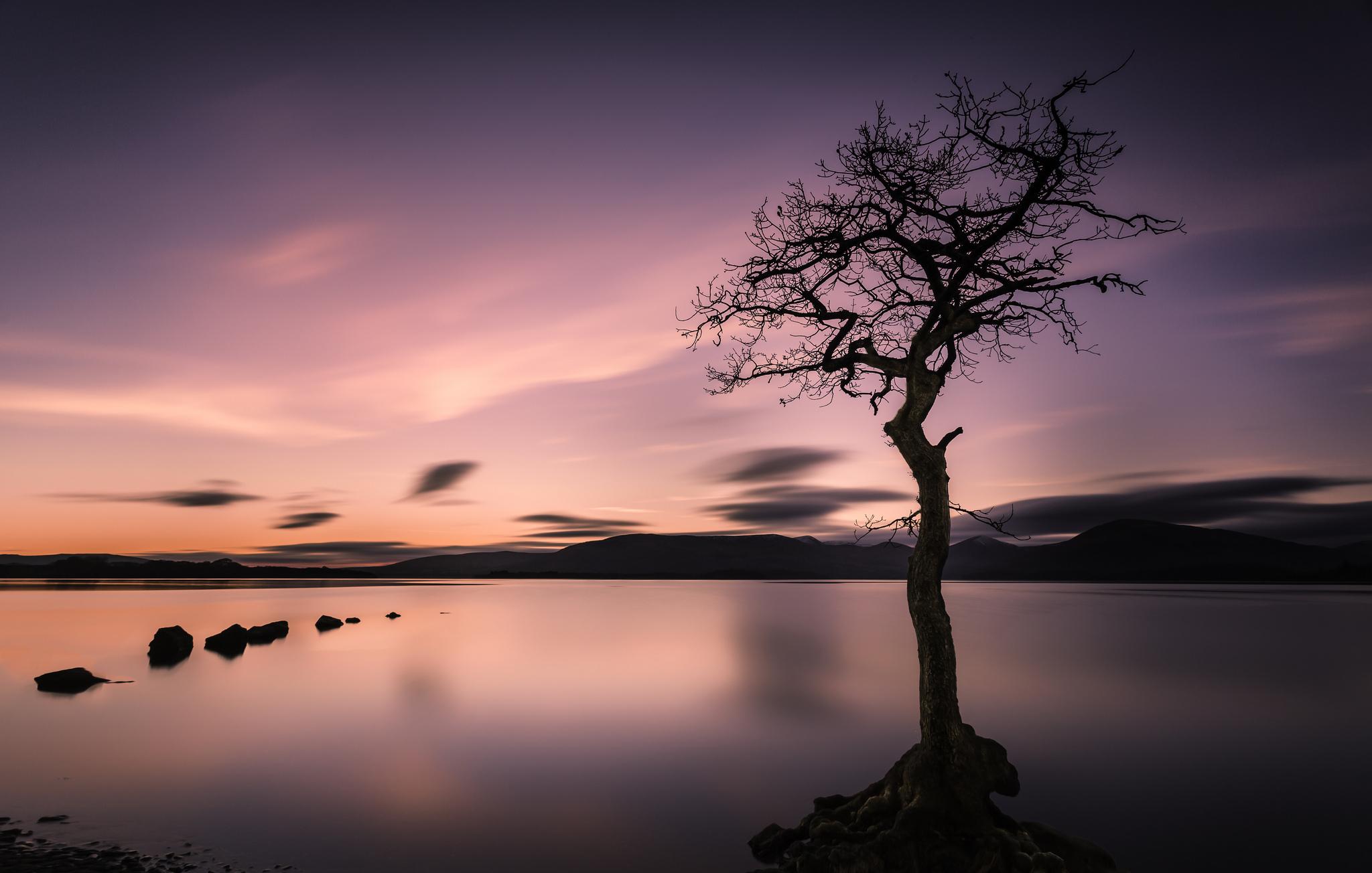 природа озеро деревья небо облака закат  № 1249510  скачать