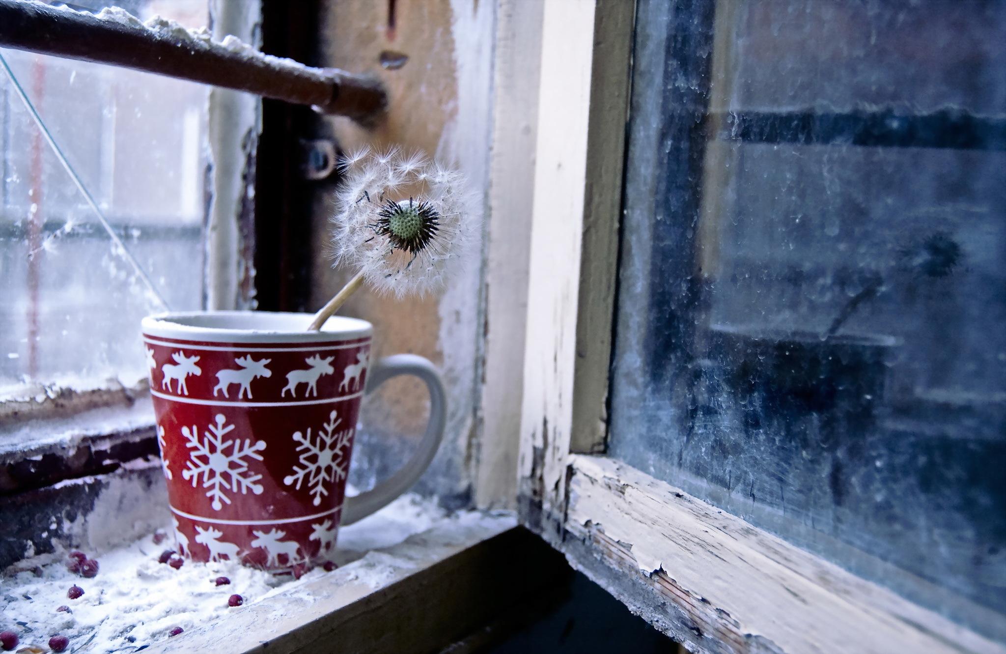 С добрым утром картинка окне анимационные