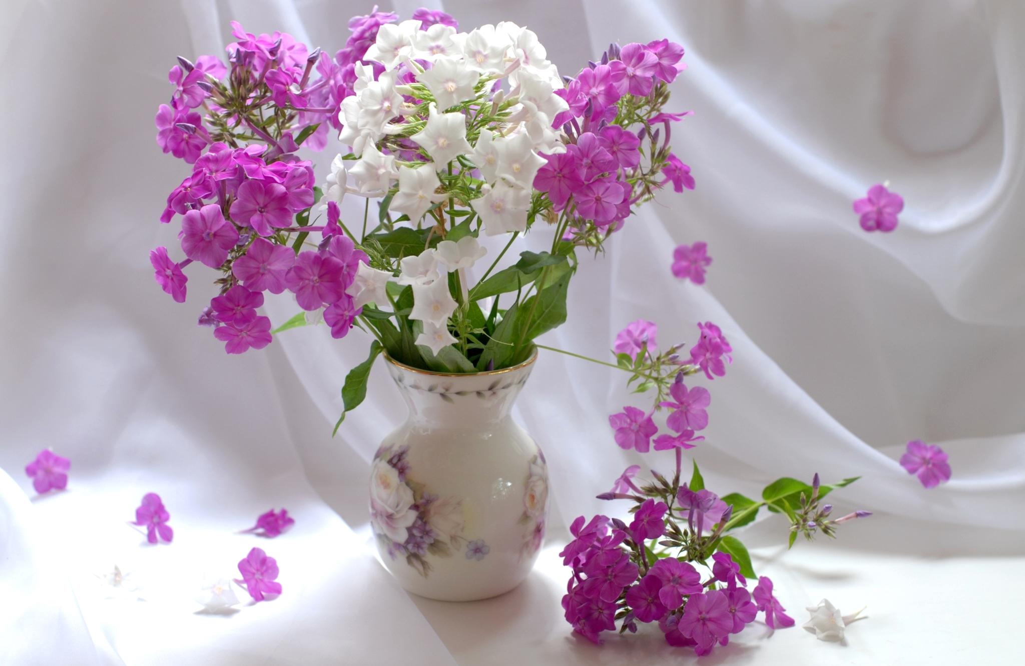 Фото рисунки цветов в вазе