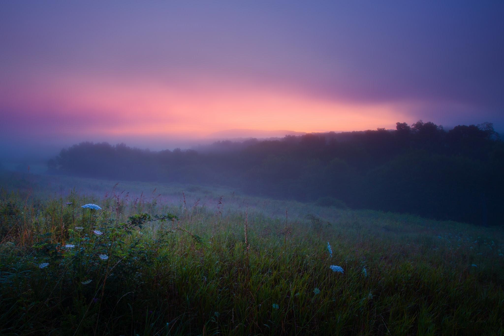 Рассвет утренний туман  № 3795897 бесплатно