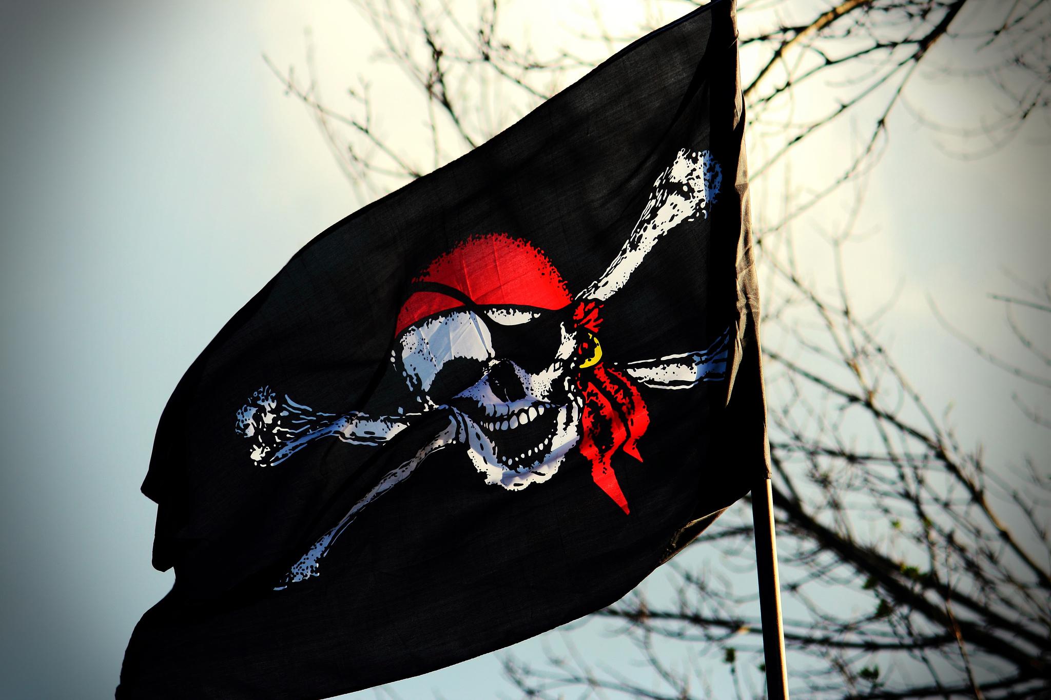 квартире счастье фотообои пиратский флаг бежевый