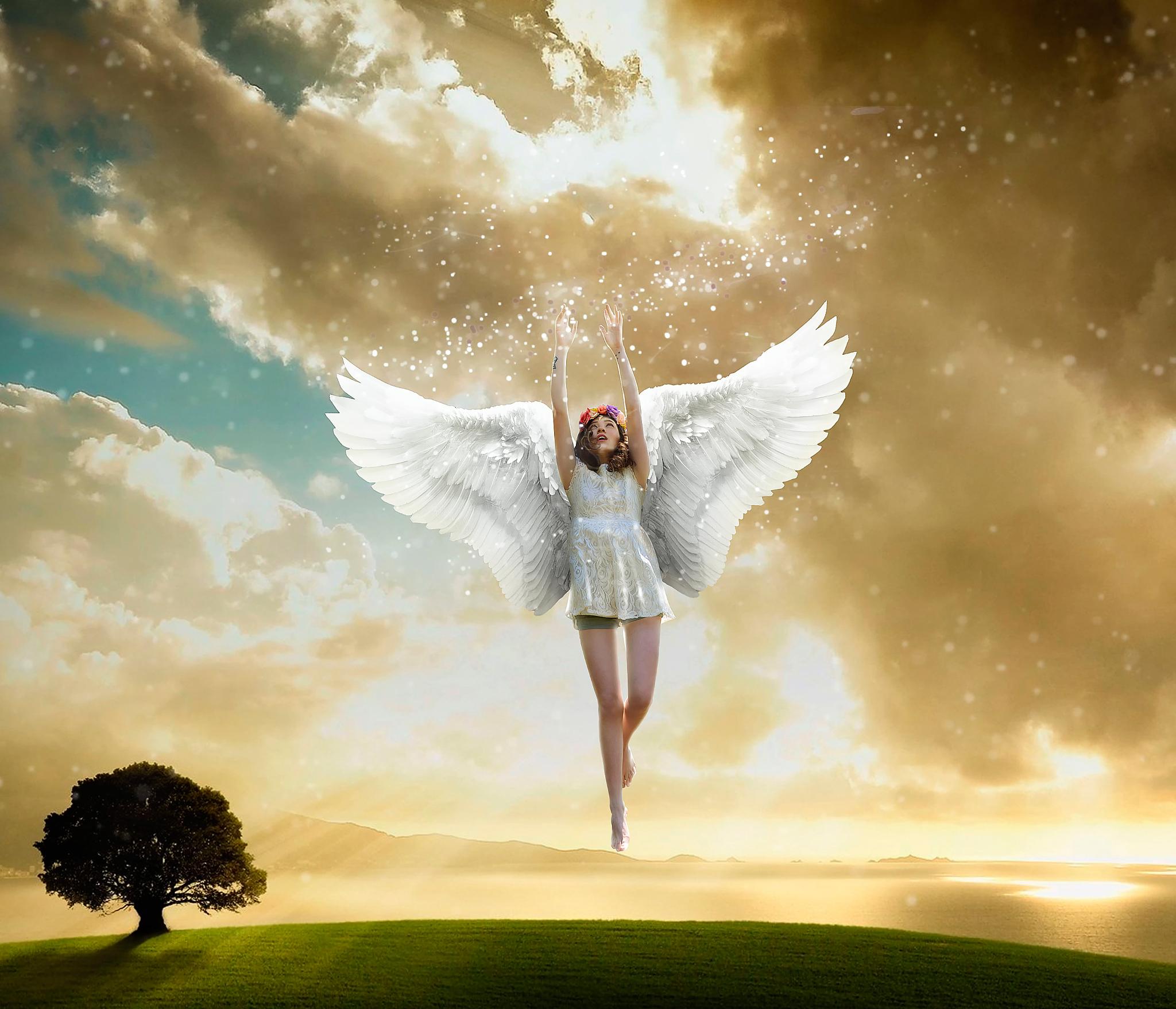 лететь на крыльях любви картинки девичника
