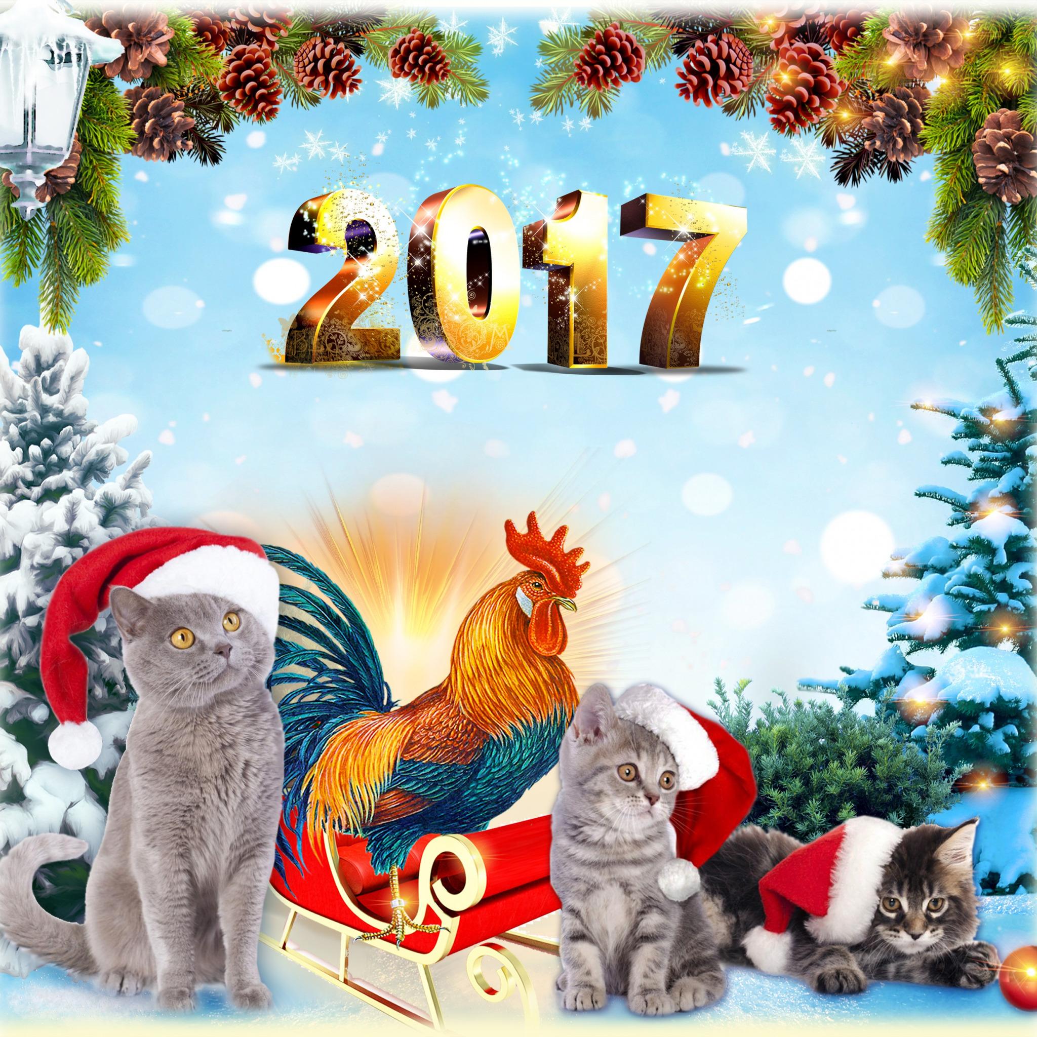 календарь нового года фото дал