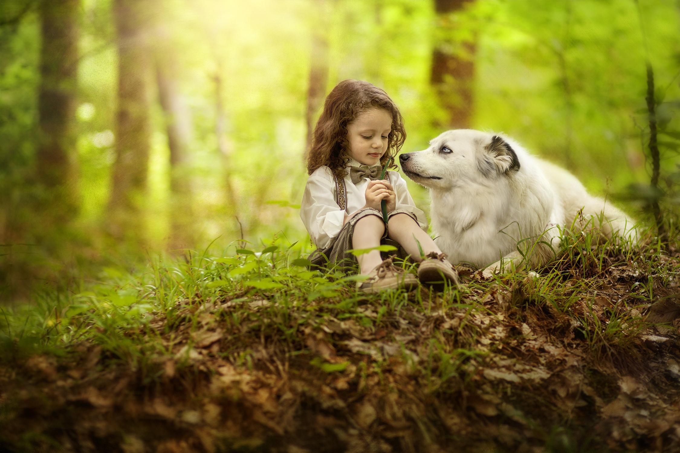 природа животные собака девочка жизнь nature animals dog girl life  № 3951060 без смс