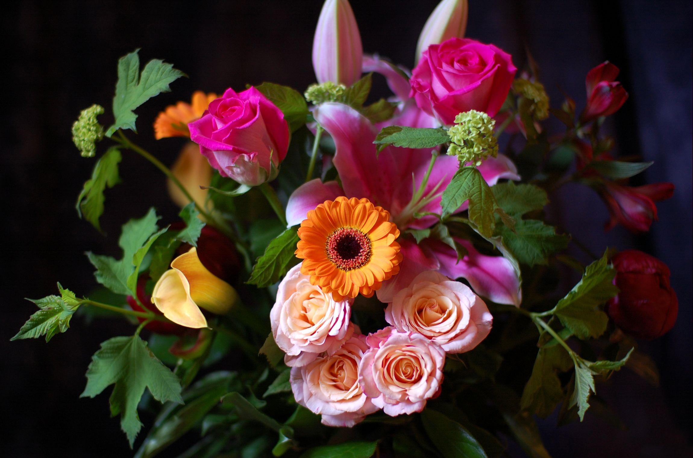 Восхитительное фото цветов