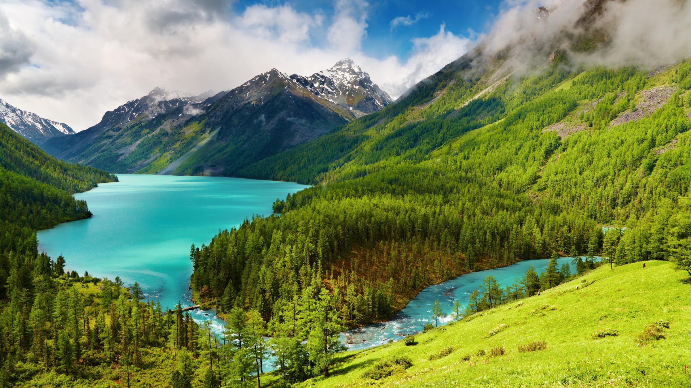 почаще шиншиллу горы с реками картинки ведь тоже