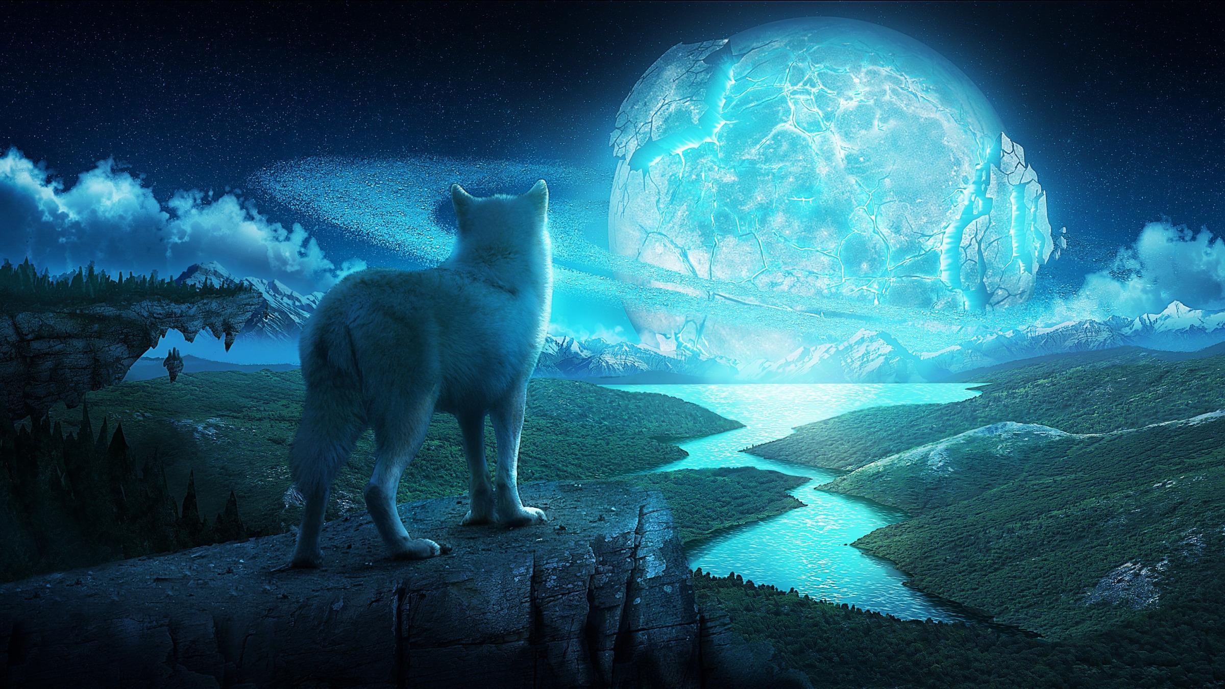 фото волка на фоне города бердске