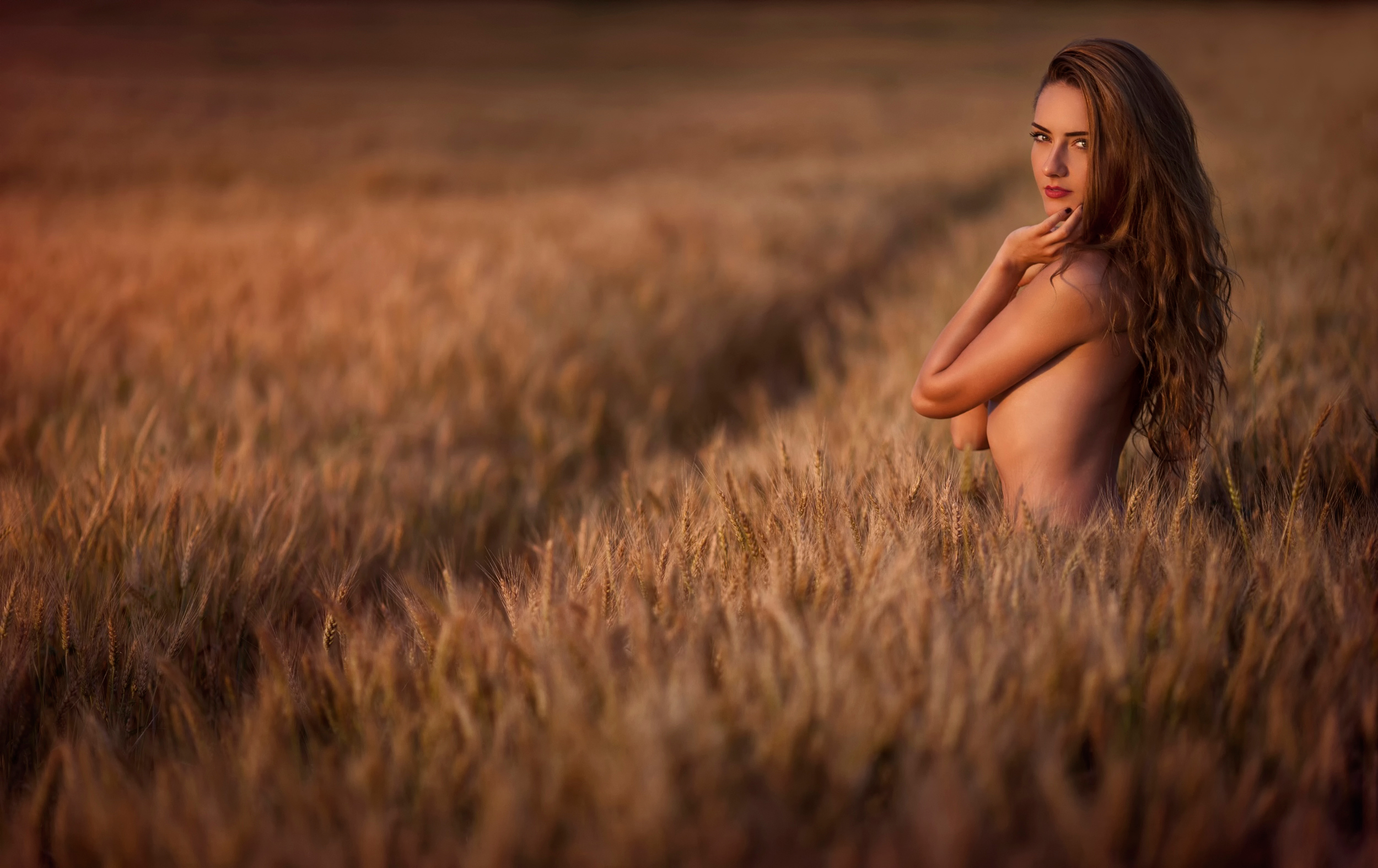 Нежная блондинка гуляет в поле жарким летом и раздевается  439795