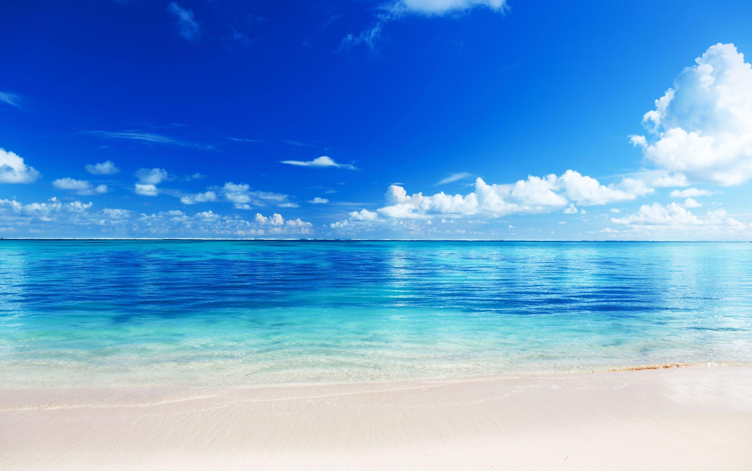 обои на экран море пляж песок голубая вода где