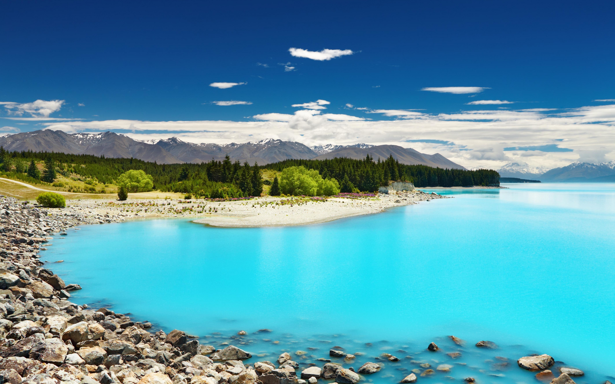 новая зеландия картинки в хорошем качестве картины отличаются