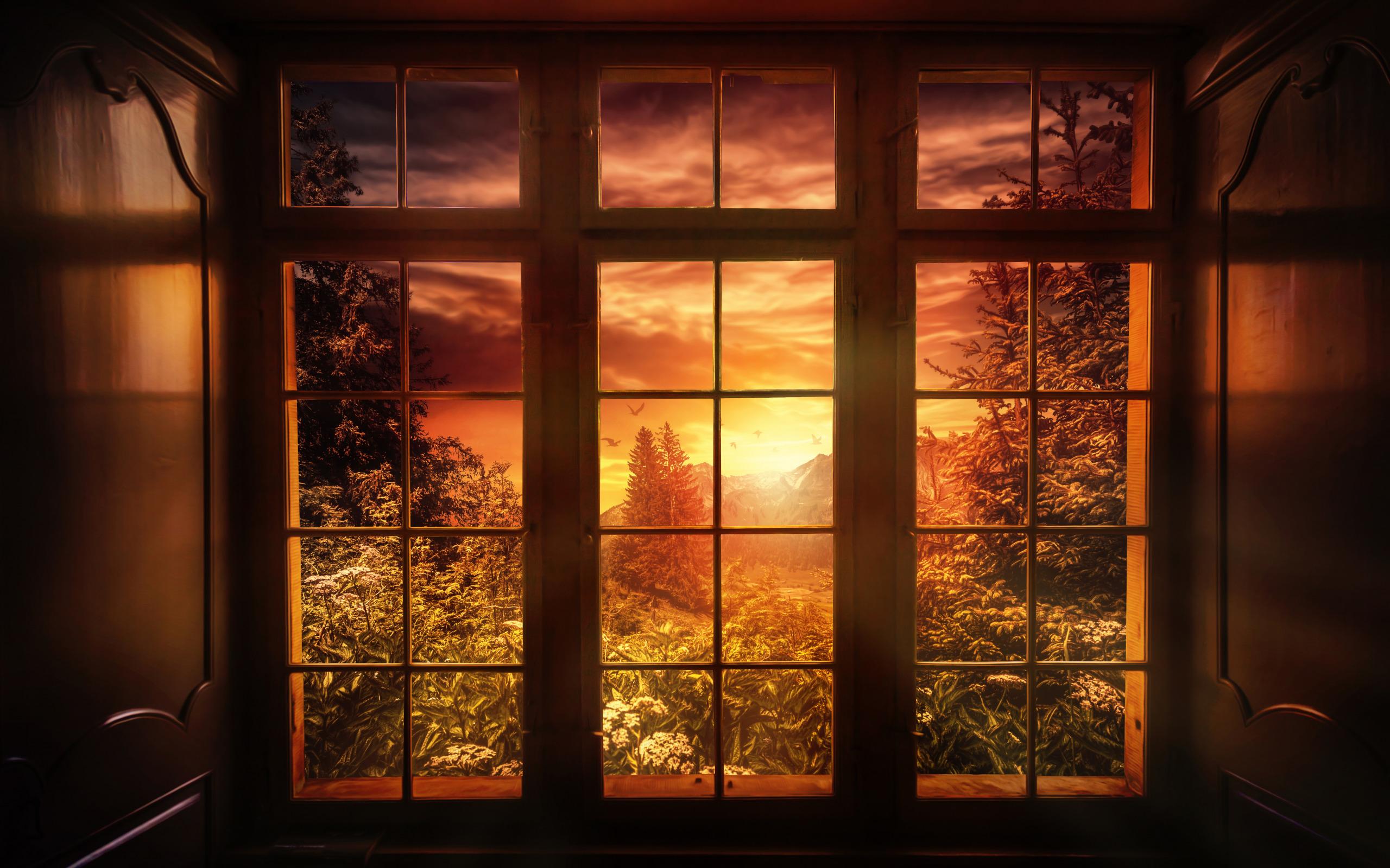 Картинка в окне