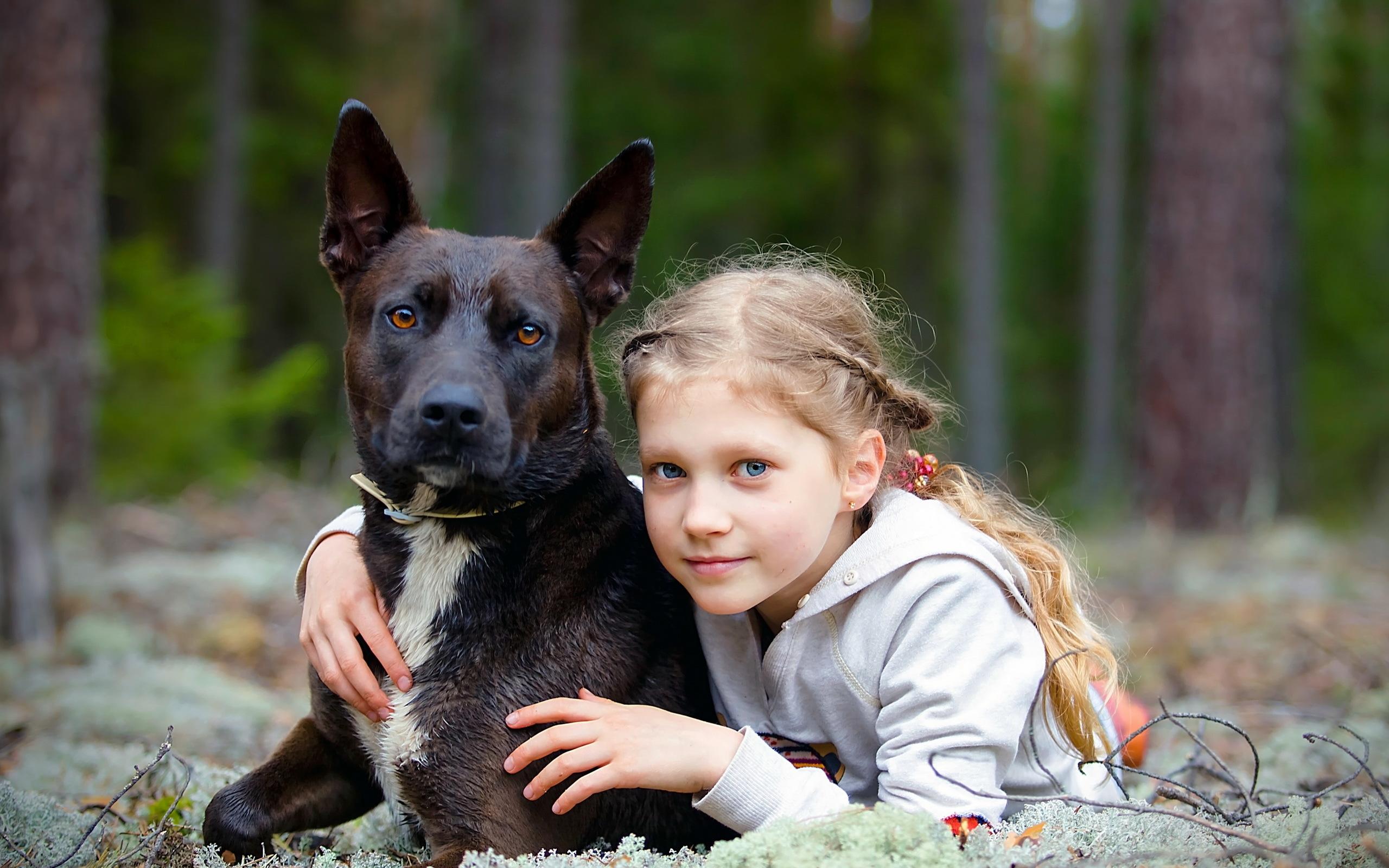 обои для рабочего стола собаки мальчика № 626515  скачать