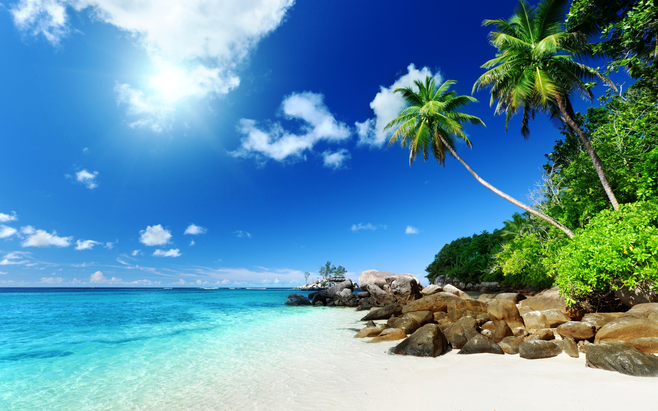 Новым, открытки с летом красивые море